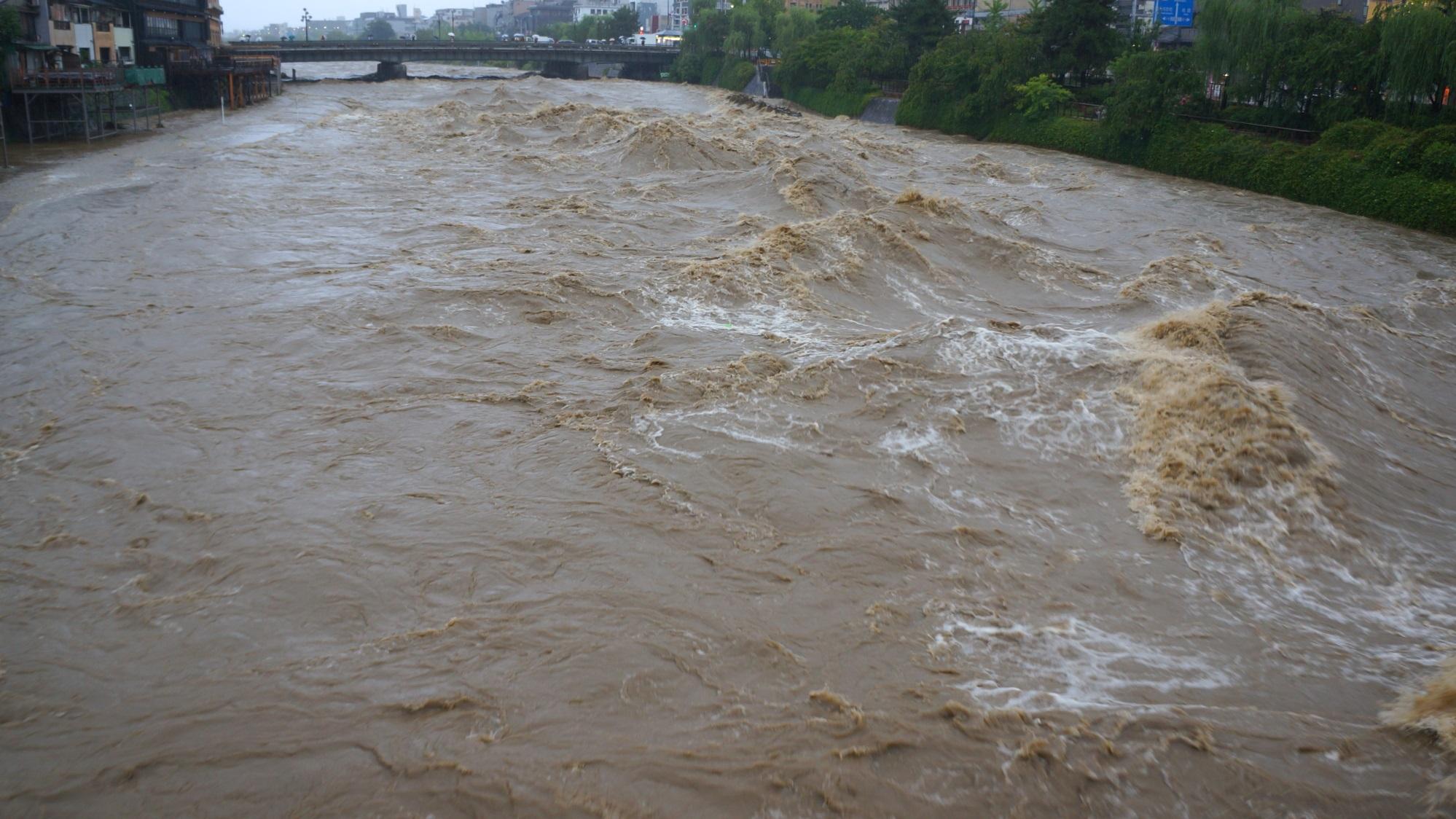 落ちると一気にのみこまれそうな怖い増水した鴨川