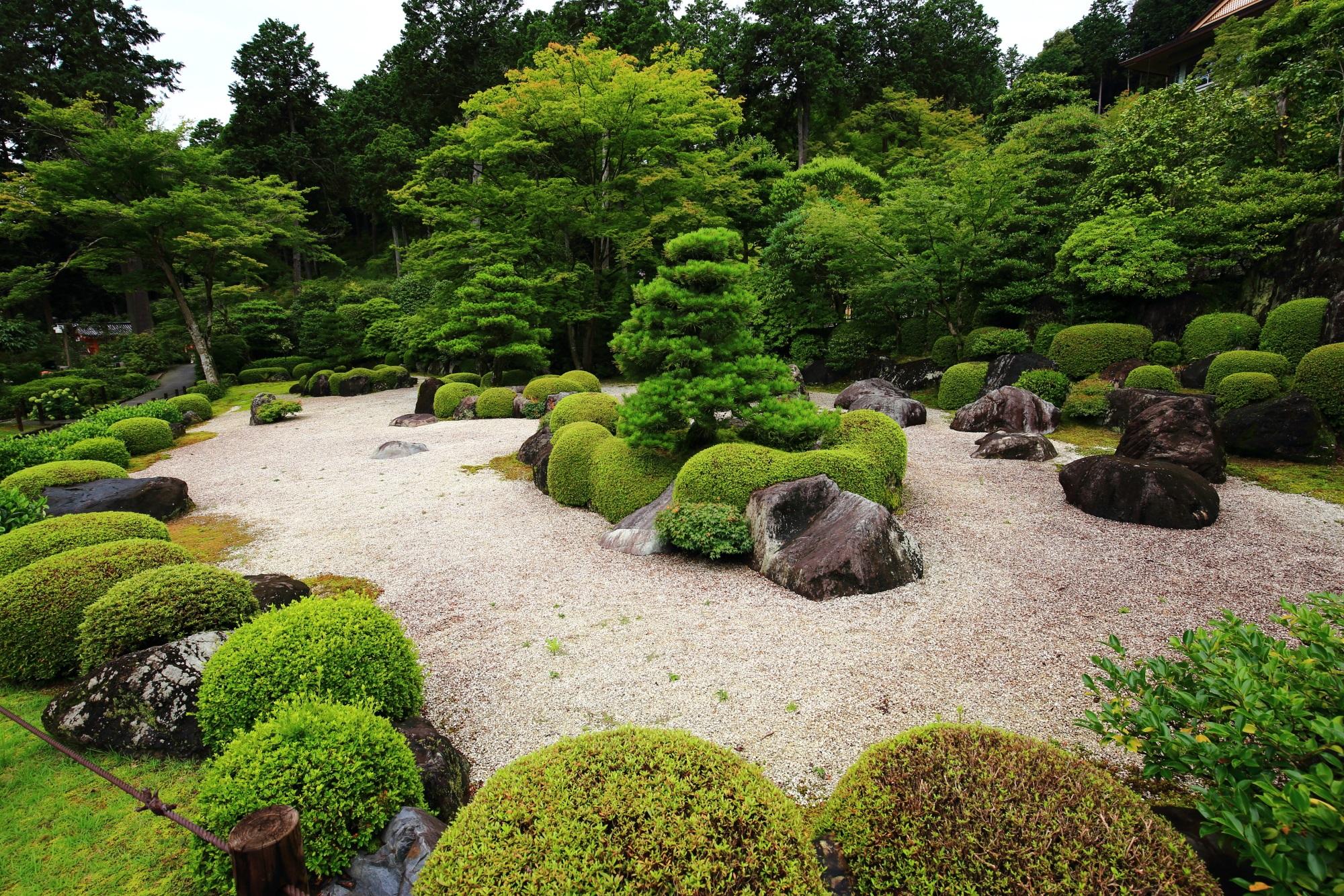 上品さと風情の感じられる三室戸寺の見事な枯山水庭園