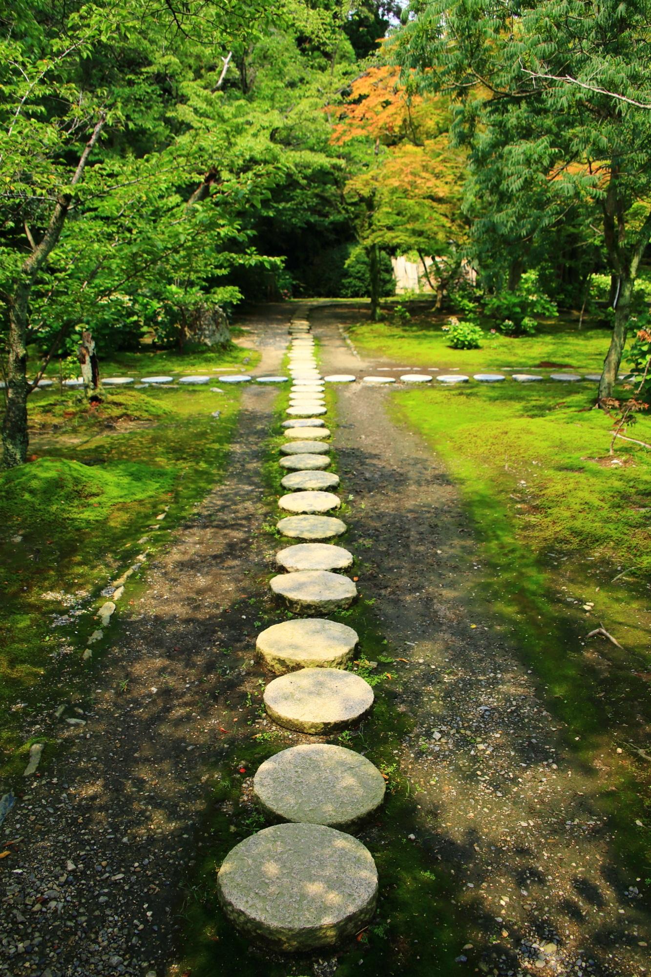 勧修寺の緑につつまれた独特の丸い飛び石の参道
