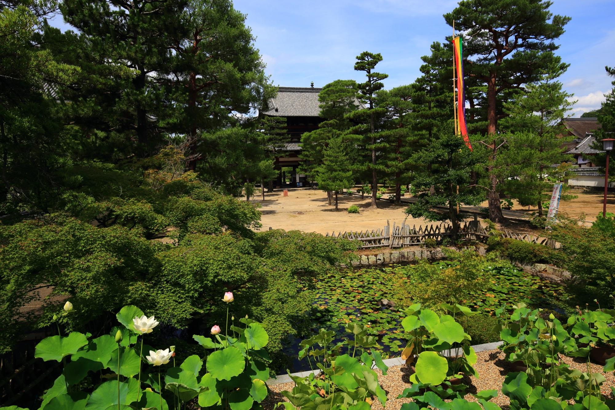 萬福寺の天王殿から眺めた大きな三門と広々とした境内