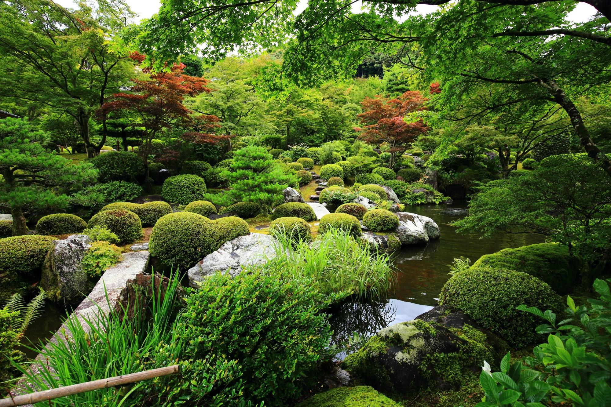 高画質 写真 池泉式庭園 三室戸寺