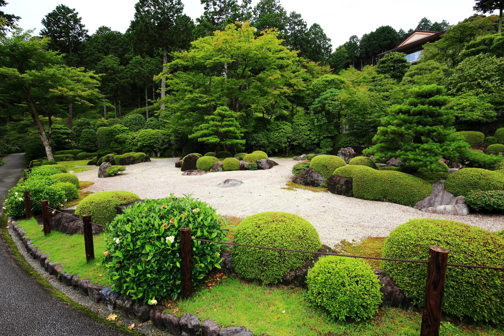 三室戸寺の深い緑が美しい枯山水庭園