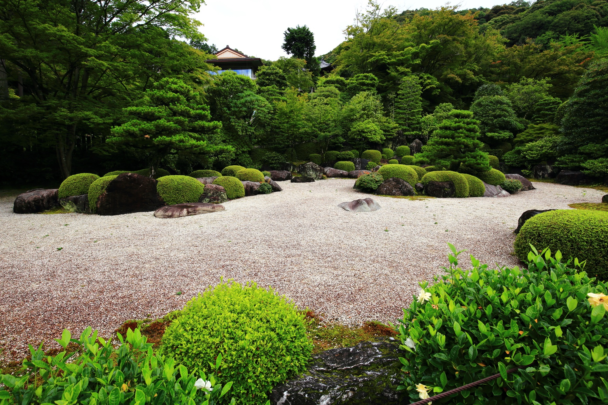 三室戸寺の白砂を刈り込みや岩が囲んだ枯山水庭園