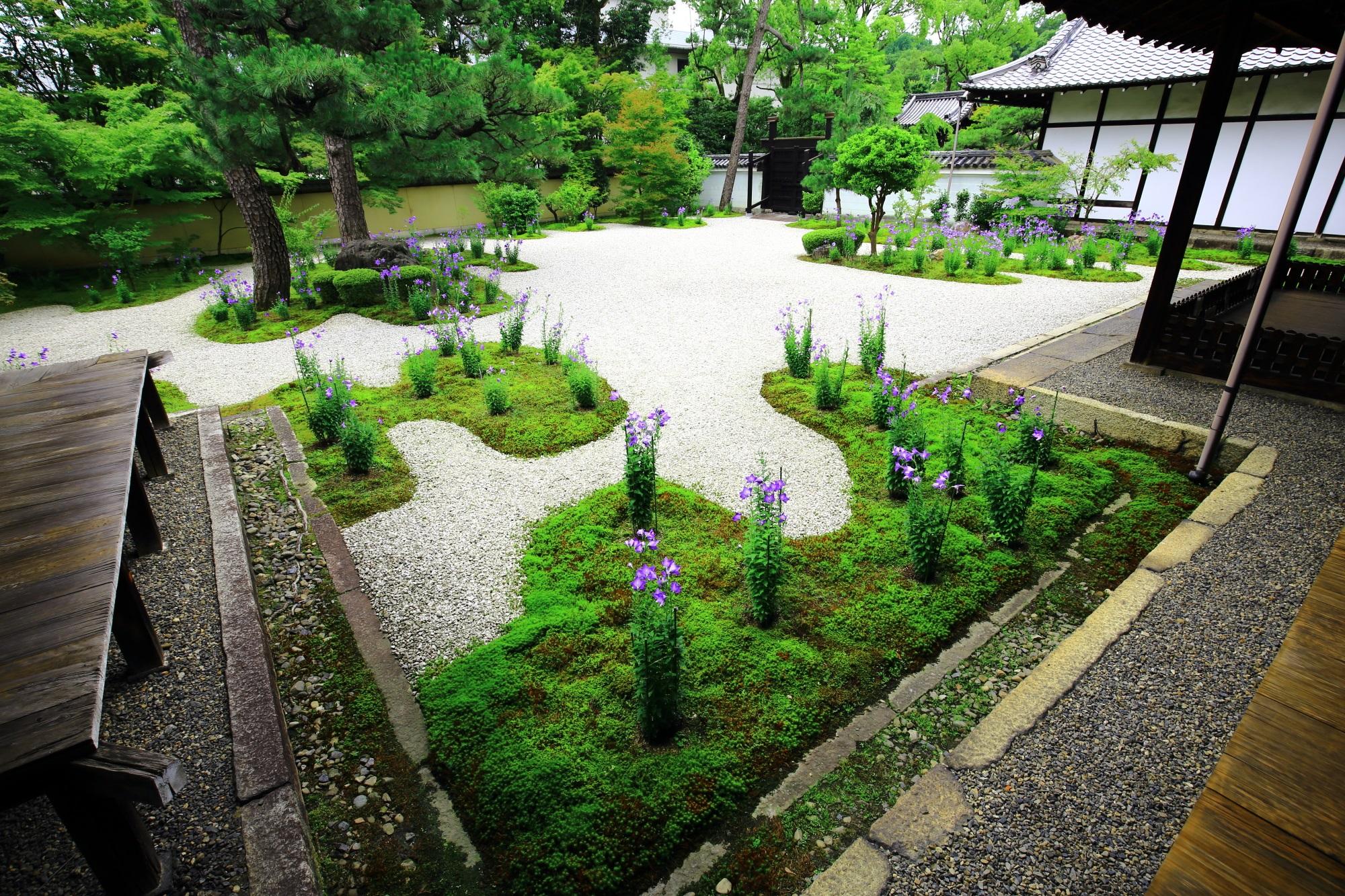 紫式部ゆかりのお寺として知られる廬山寺