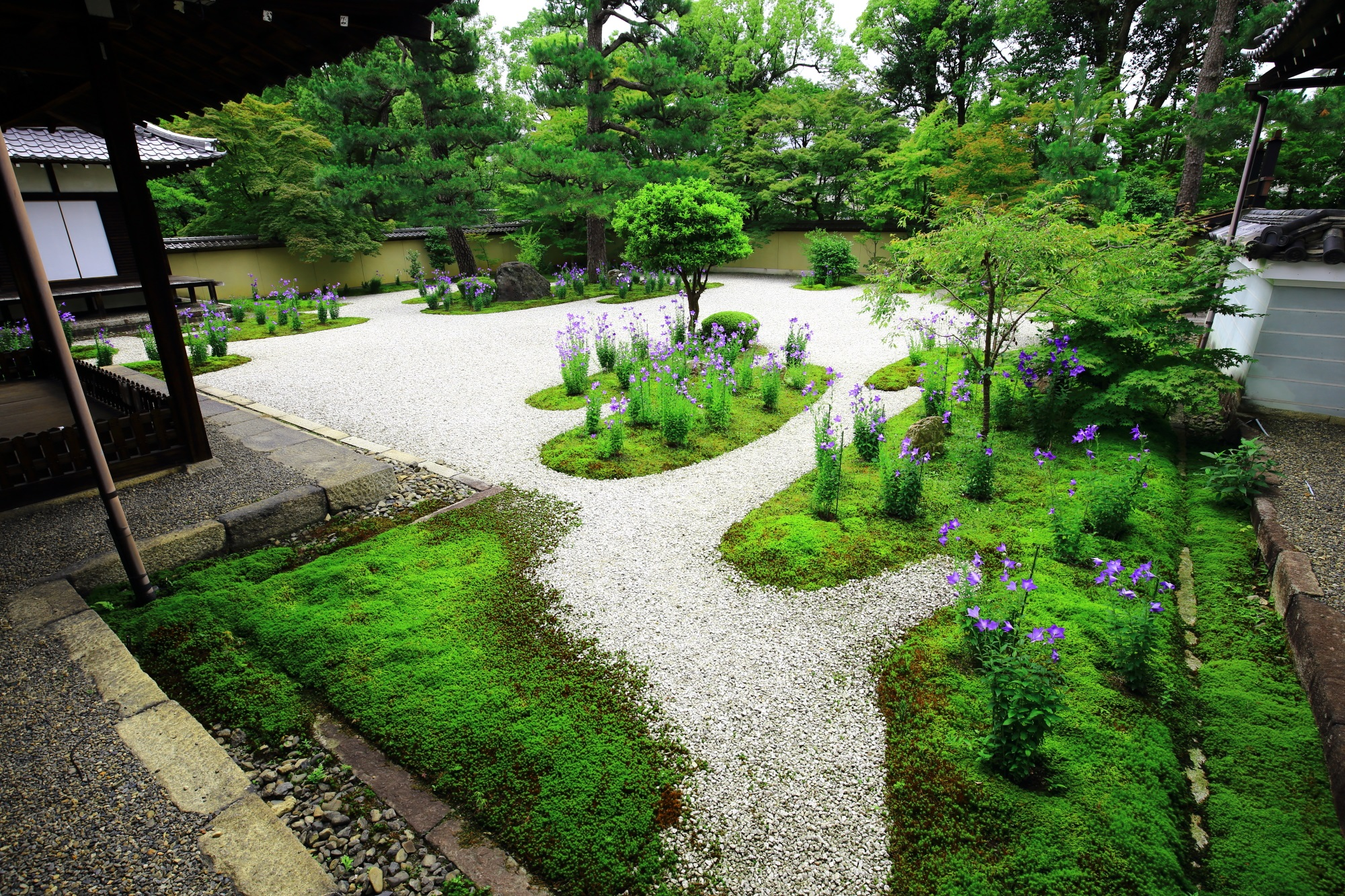 苔や青もみじなどの美しい緑につつまれた見事な源氏庭