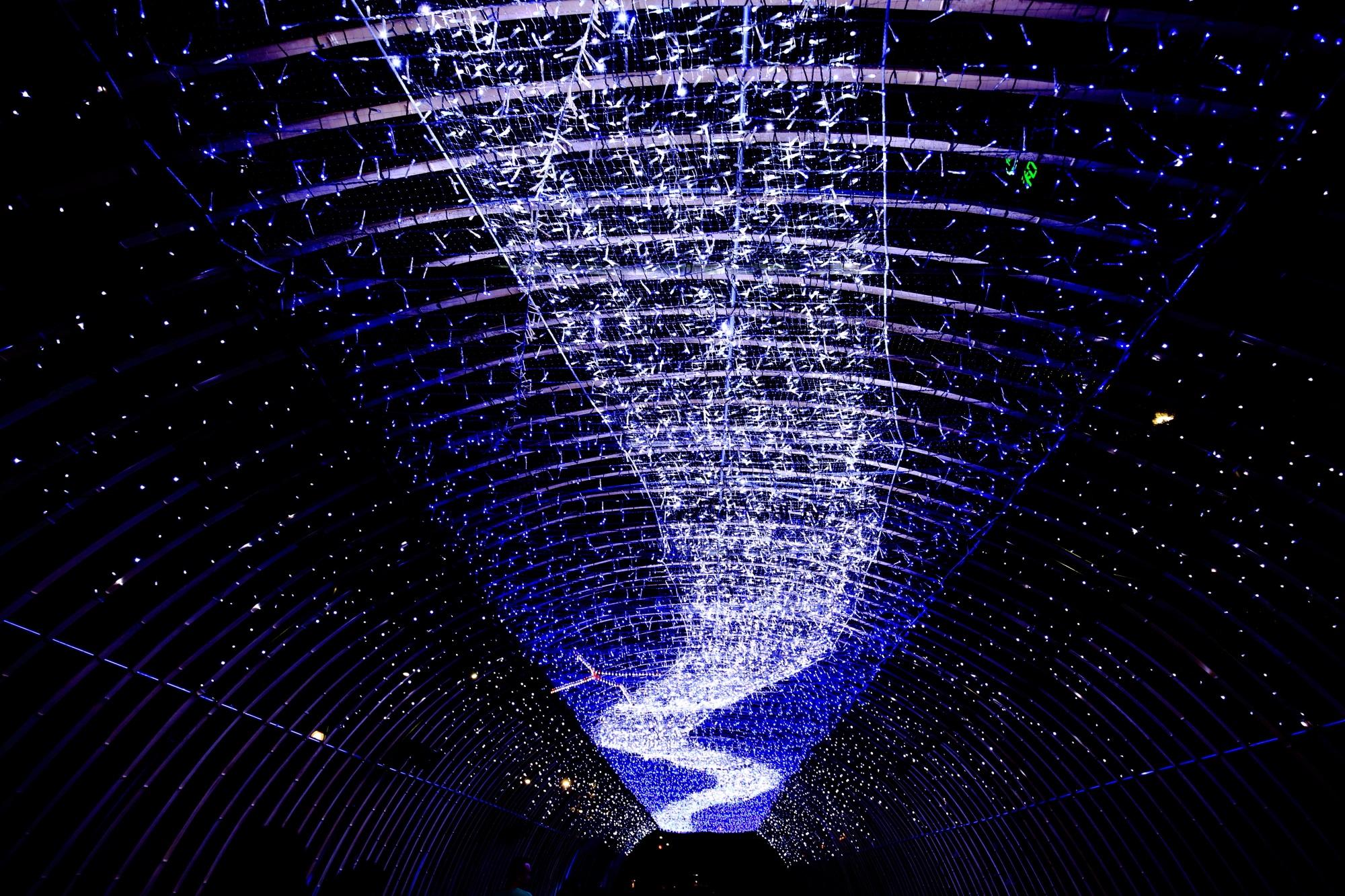 夏の風物詩の京の七夕の堀川会場の幻想的な光の天の川