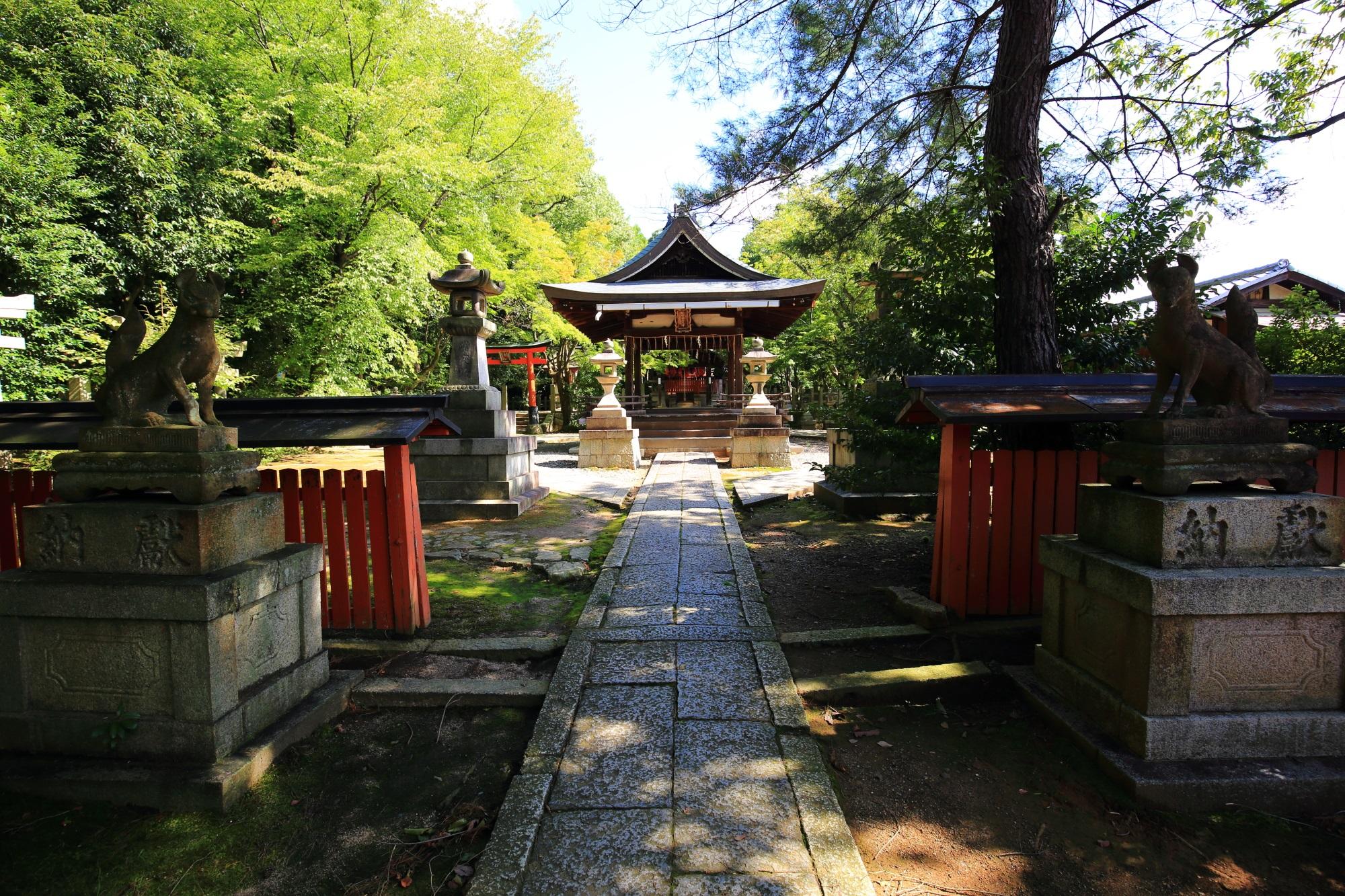 春の桜や秋の紅葉の隠れた名所の竹中稲荷神社