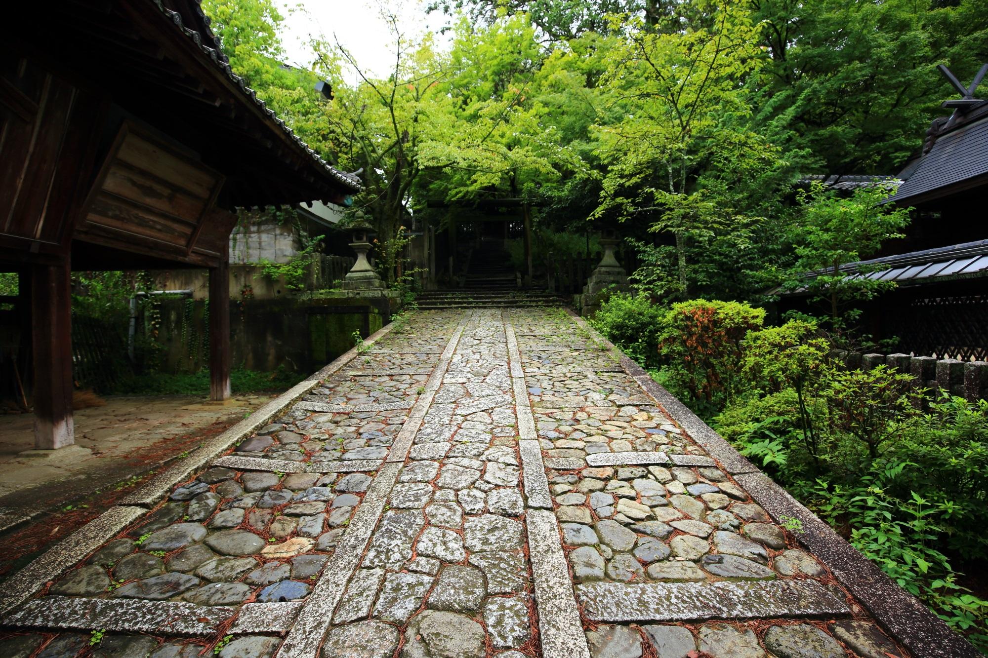 美しい緑に囲まれた風情ある石の坂道の参道