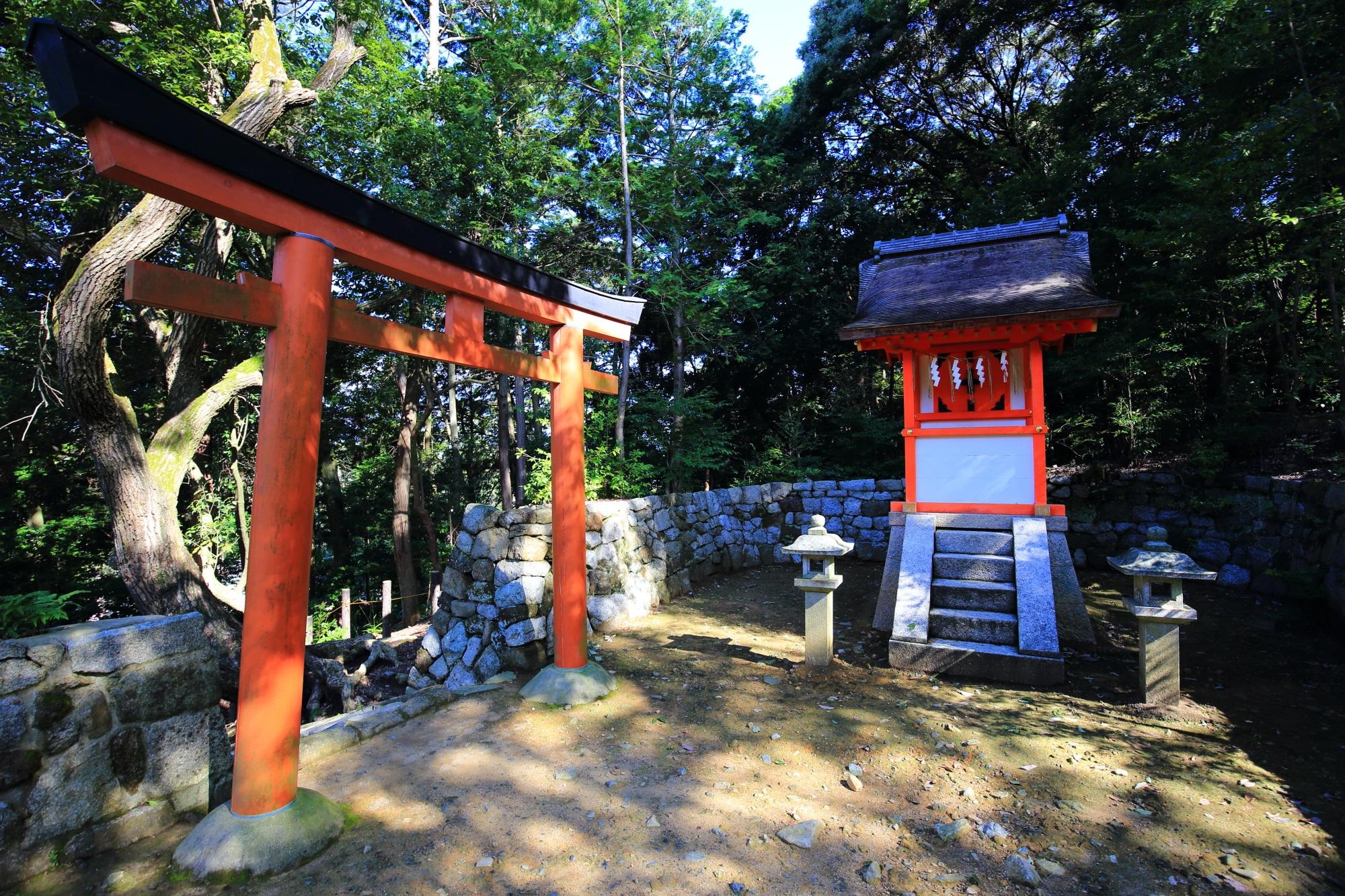長い石段上の鳥居の横に鎮座に鎮座する神龍社