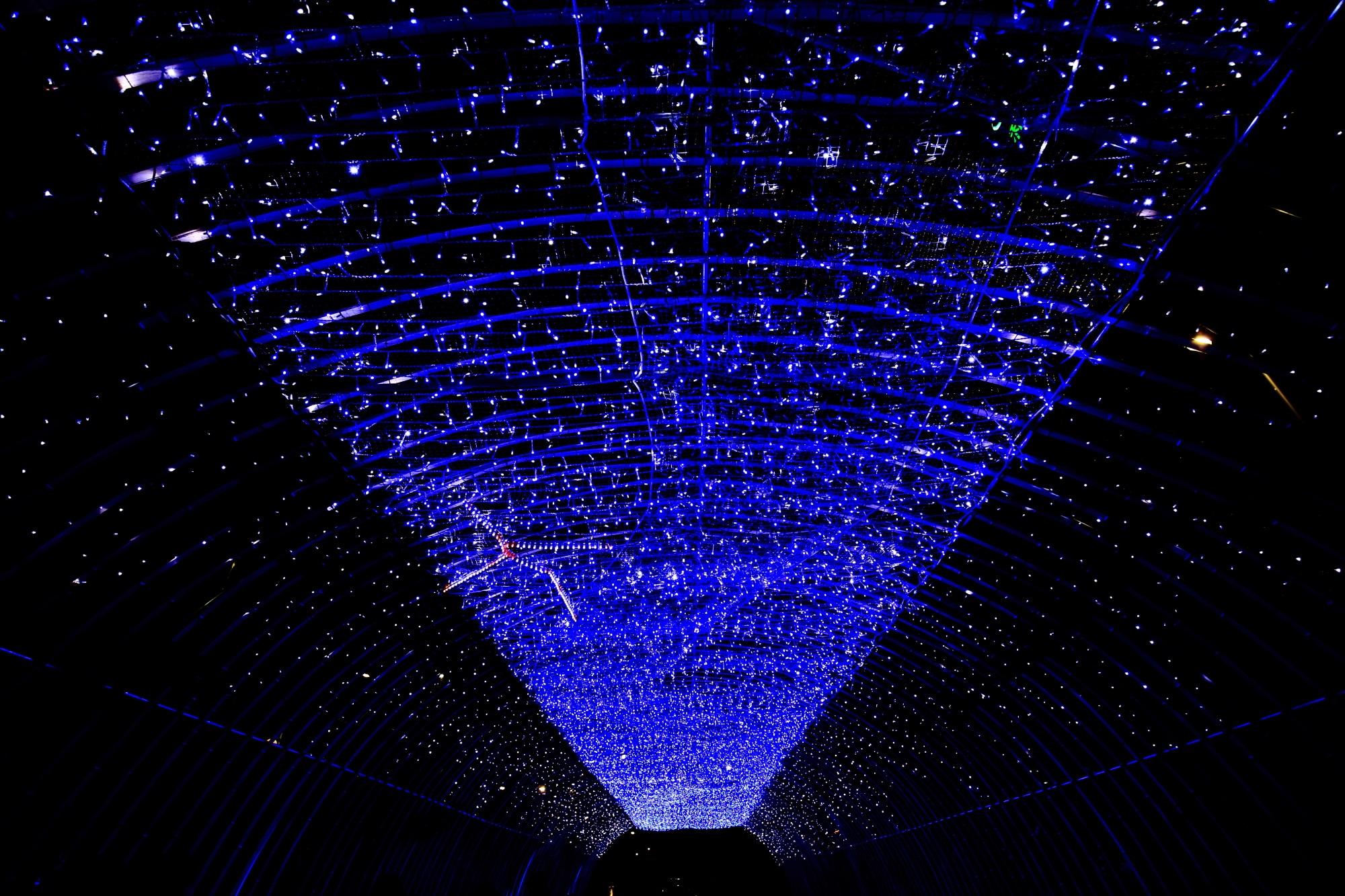 京の七夕堀川会場の光の天の川