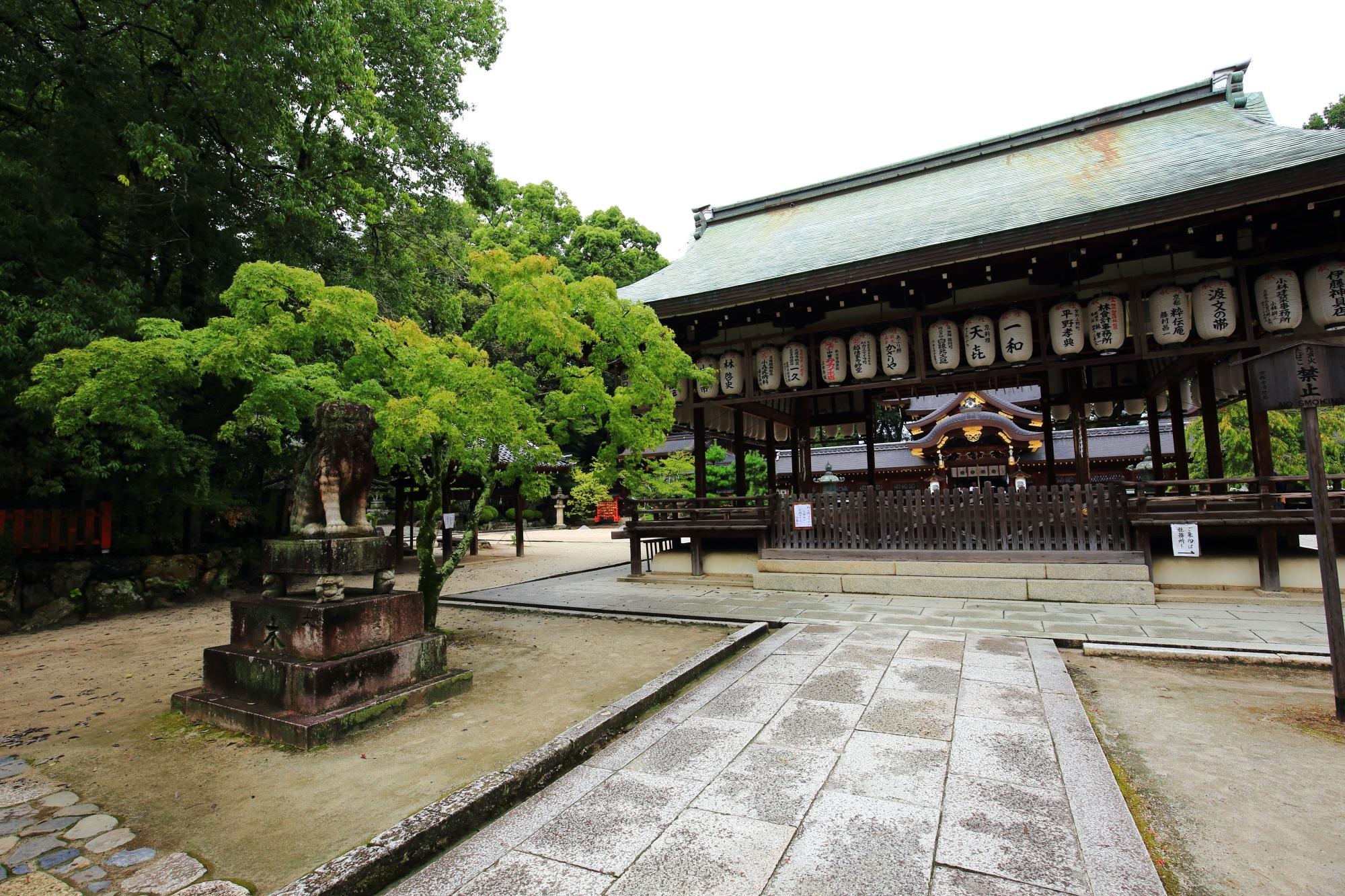 狛犬や綺麗な緑に囲まれた雄大な拝殿