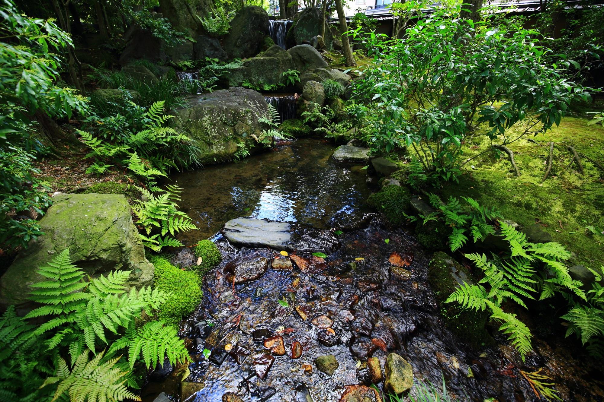 無鄰菴(むりんあん)の池泉回遊式庭園の滝