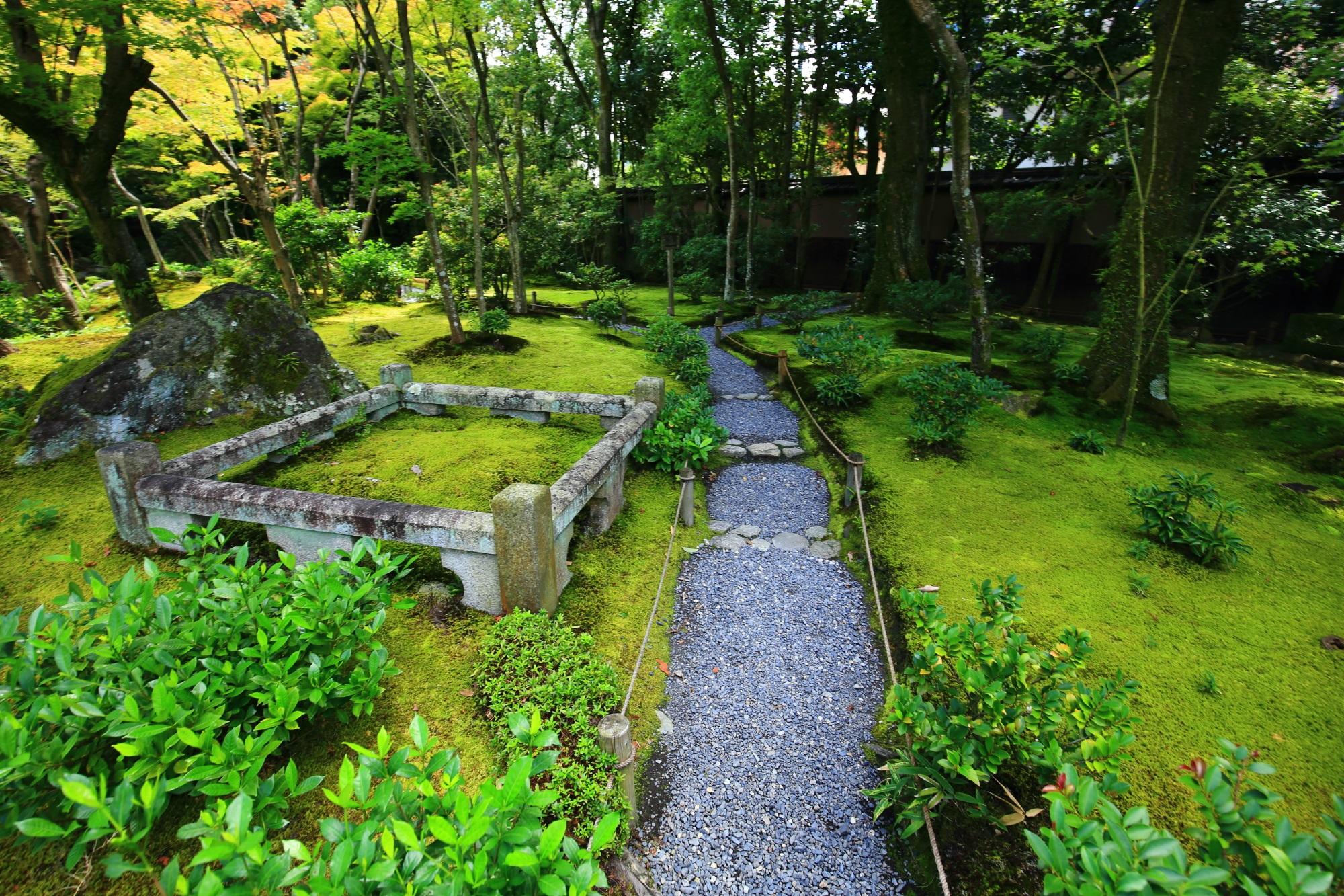無鄰菴(むりんあん)の優雅な池泉回遊式庭園の苔