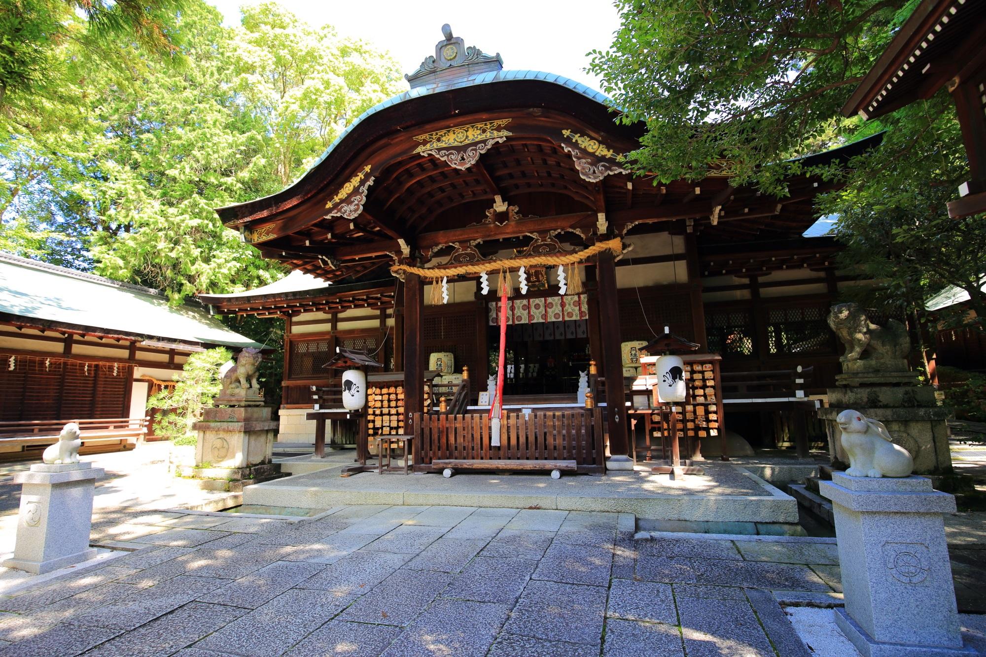 高画質 写真 狛うさぎ 岡崎神社