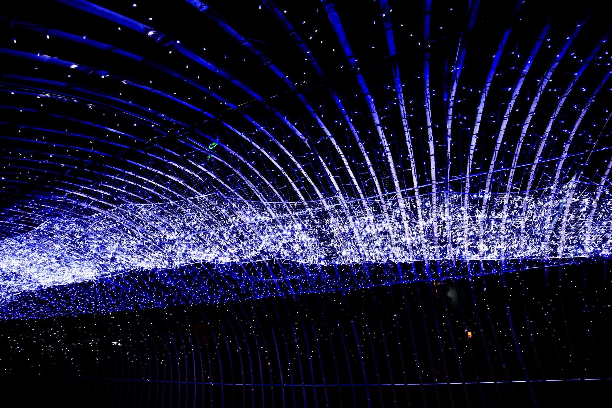 京の七夕堀川会場の光の天の川 8月