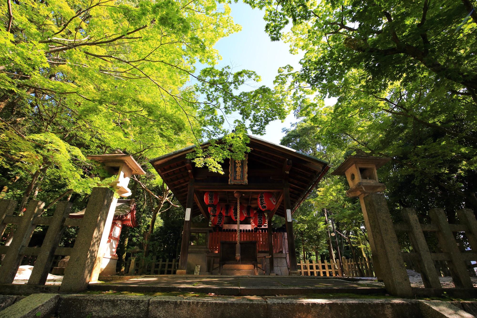 眩しい緑の中に静かに鎮座する竹中稲荷神社の本殿