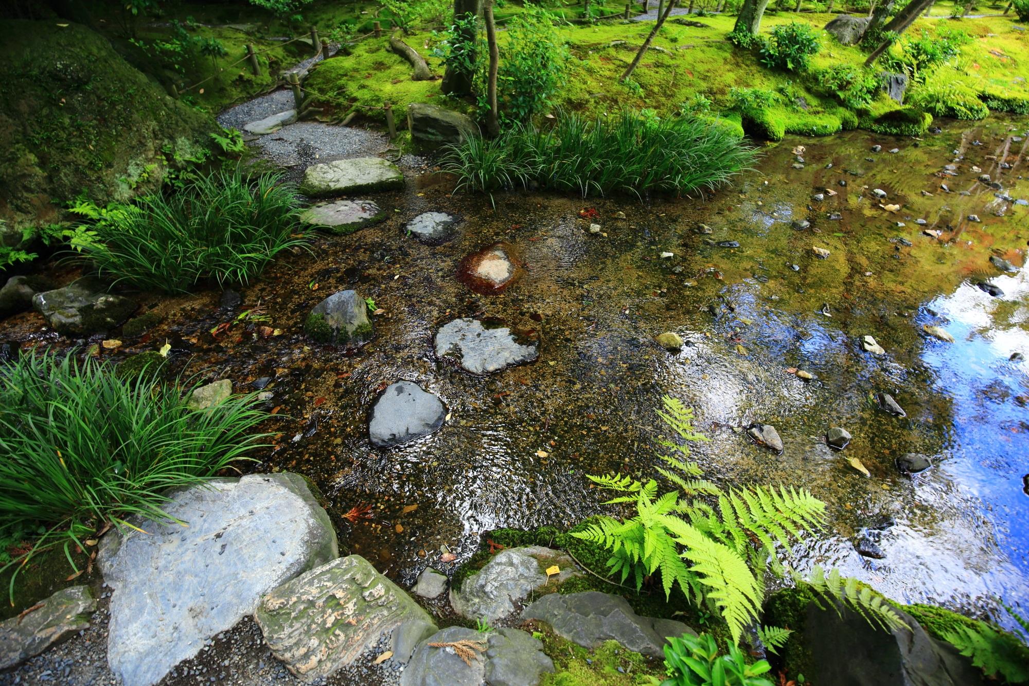 無鄰菴(むりんあん)の美しい池泉回遊式庭園 8月27日