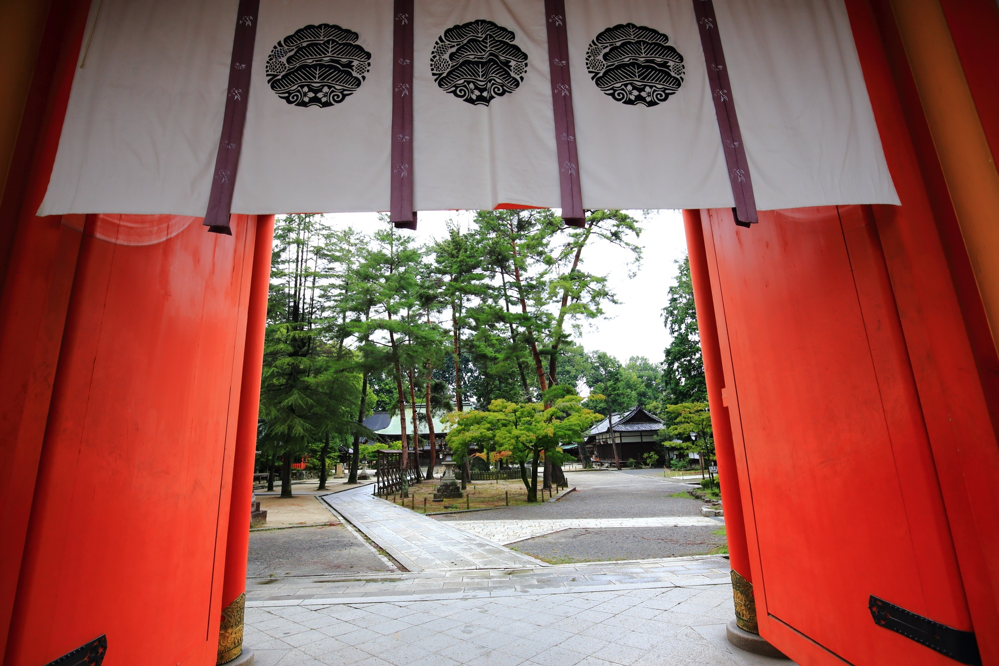 楼門の下から眺めた今宮神社の境内