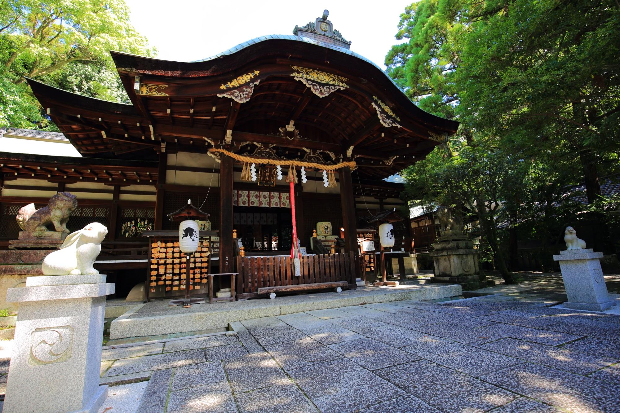 岡崎神社の非常に絵になる本殿と狛うさぎ