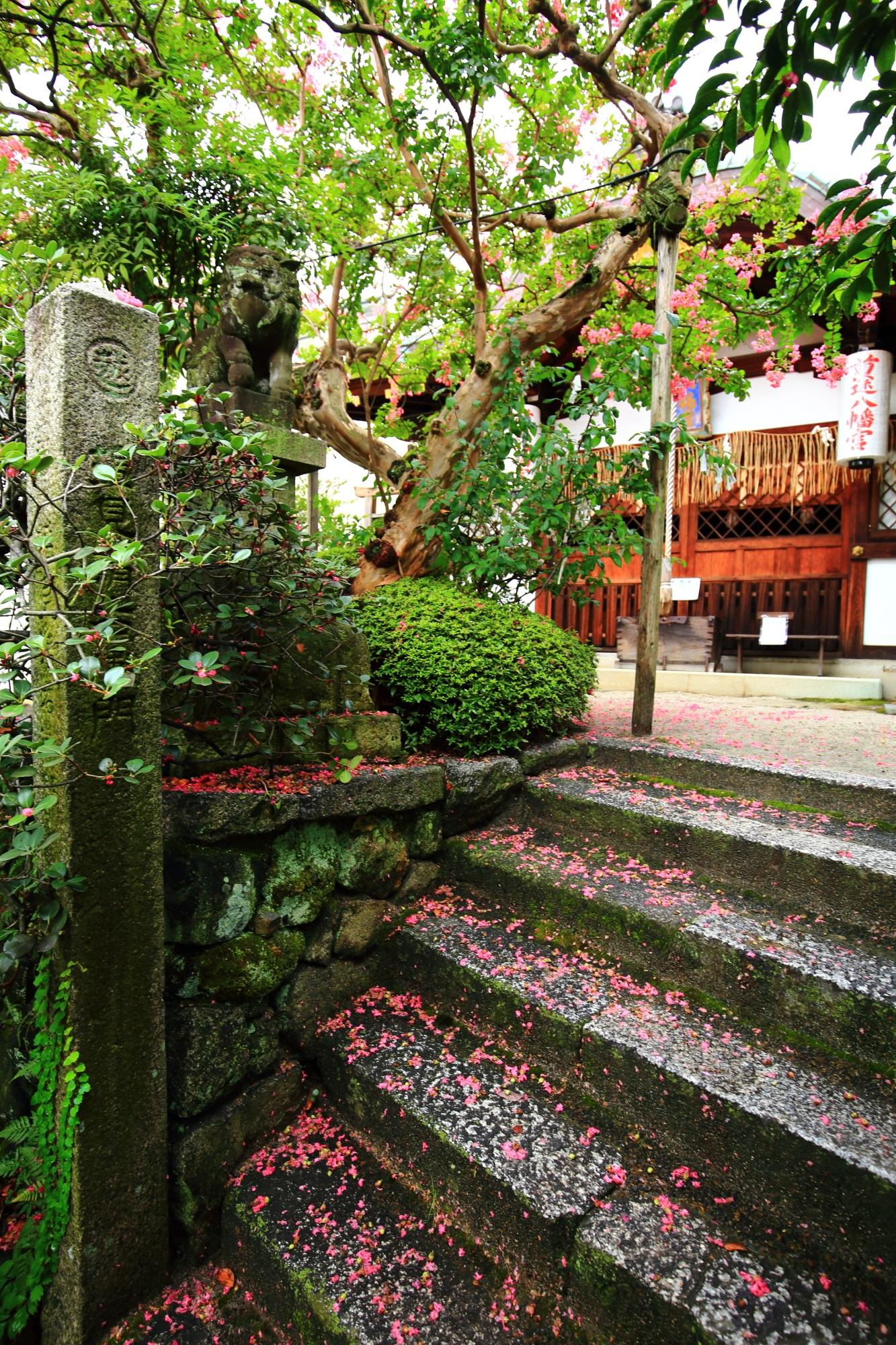 首途八幡宮の本殿と華やかな散った百日紅の花
