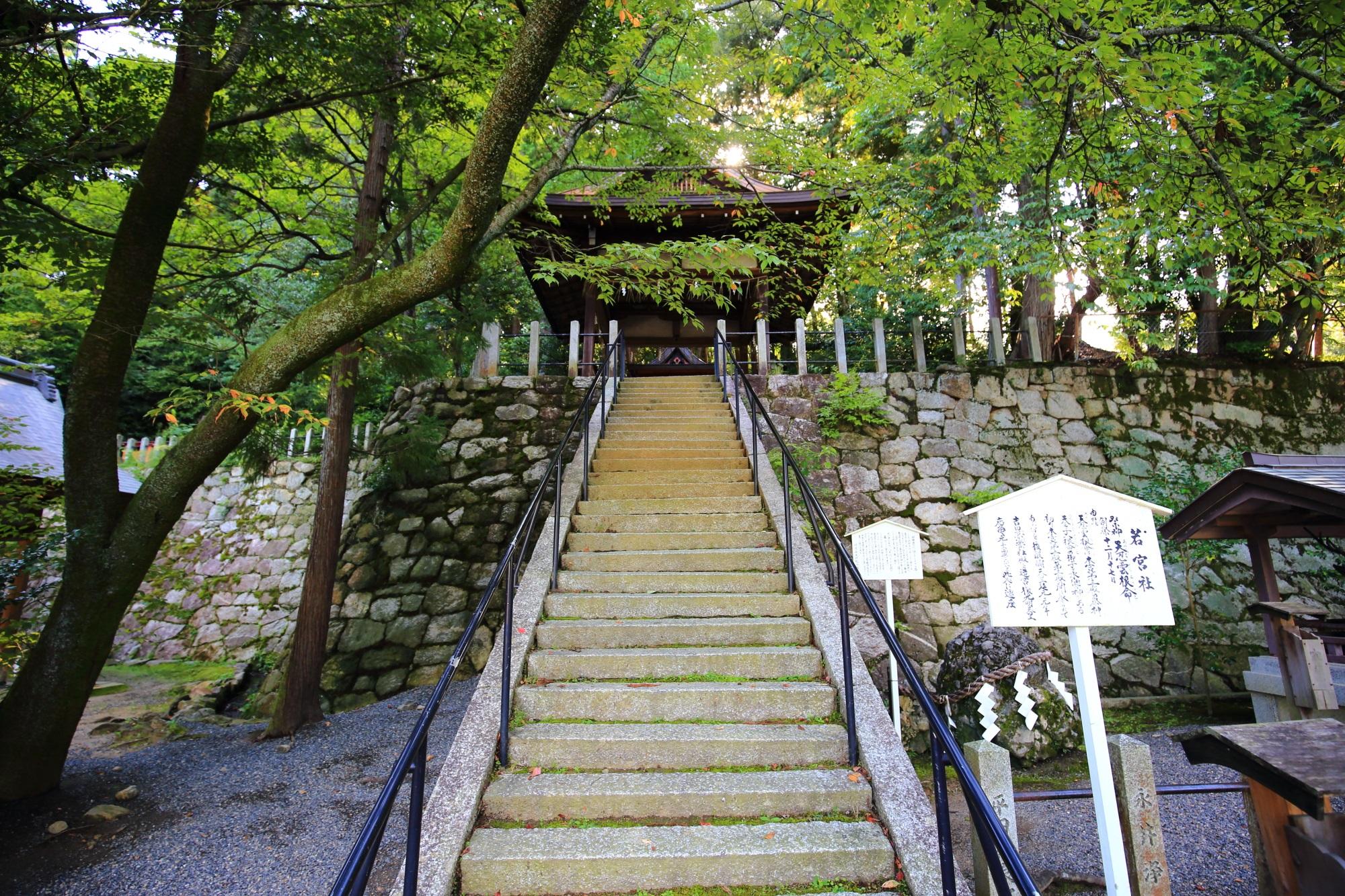風情ある長い石段の上に鎮座する水の神様の若宮社