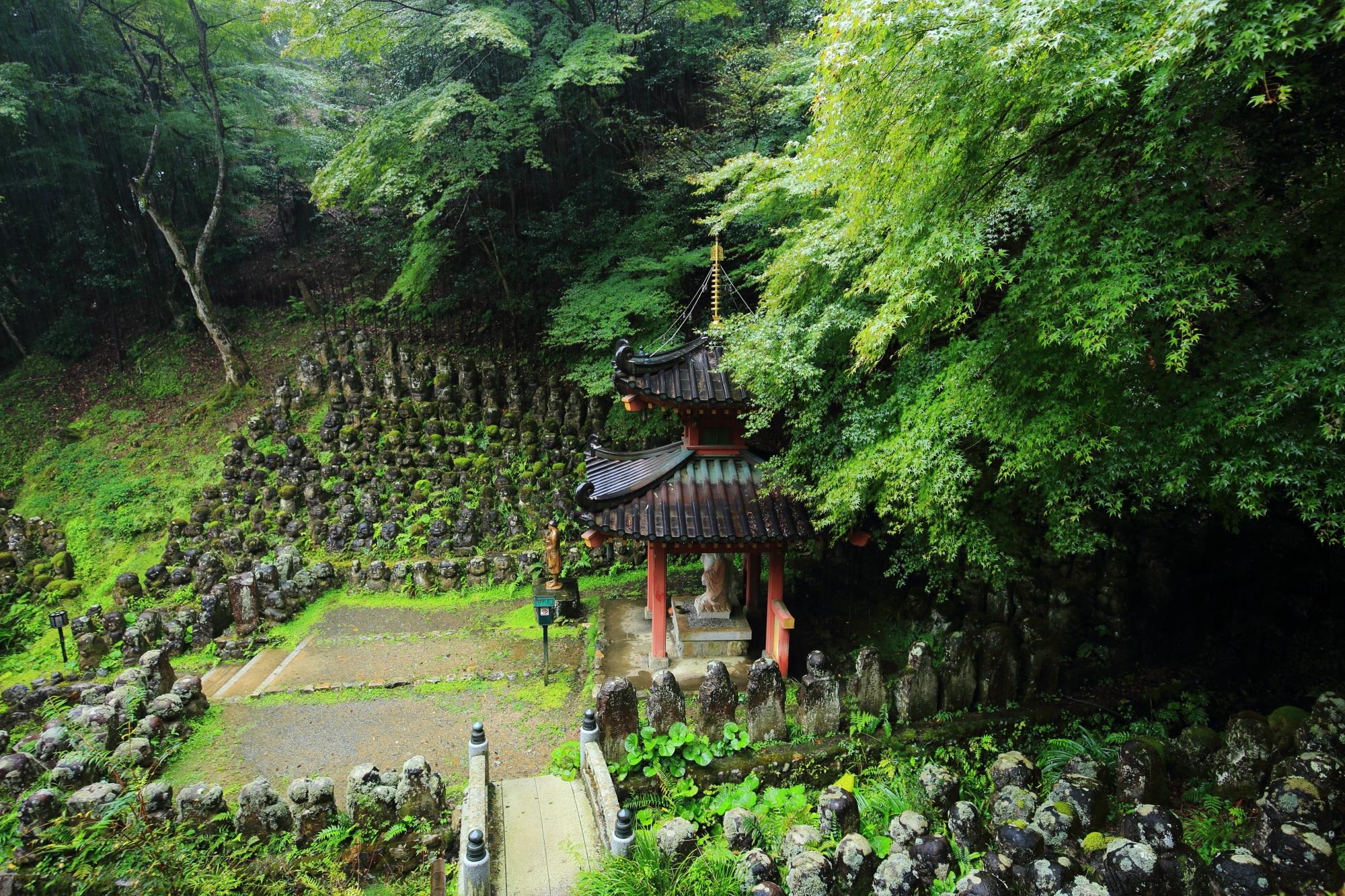 愛宕念仏寺の多宝塔と青もみじと千二百羅漢