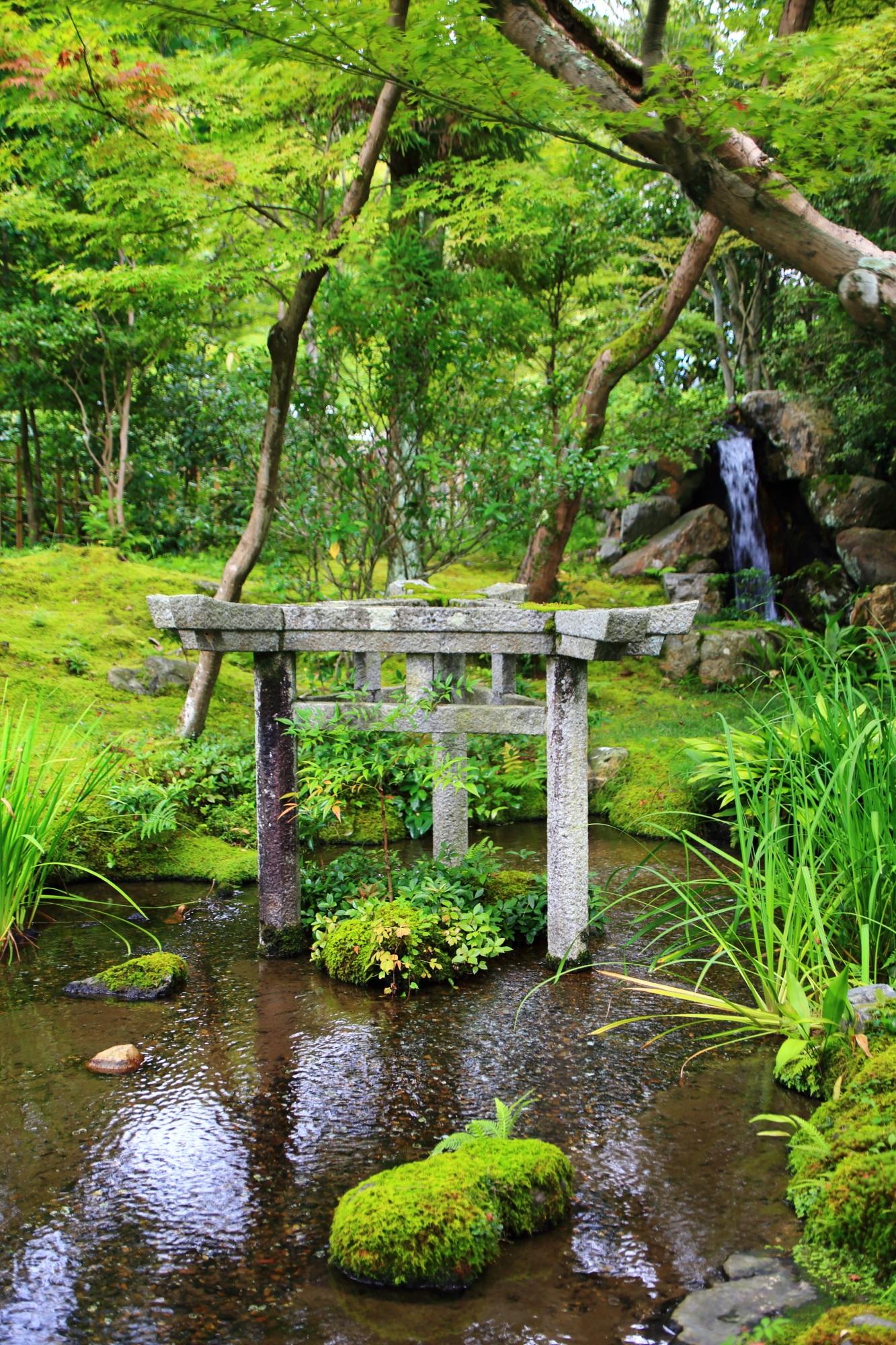 南禅寺大寧軒の珍しい三柱鳥居と苔