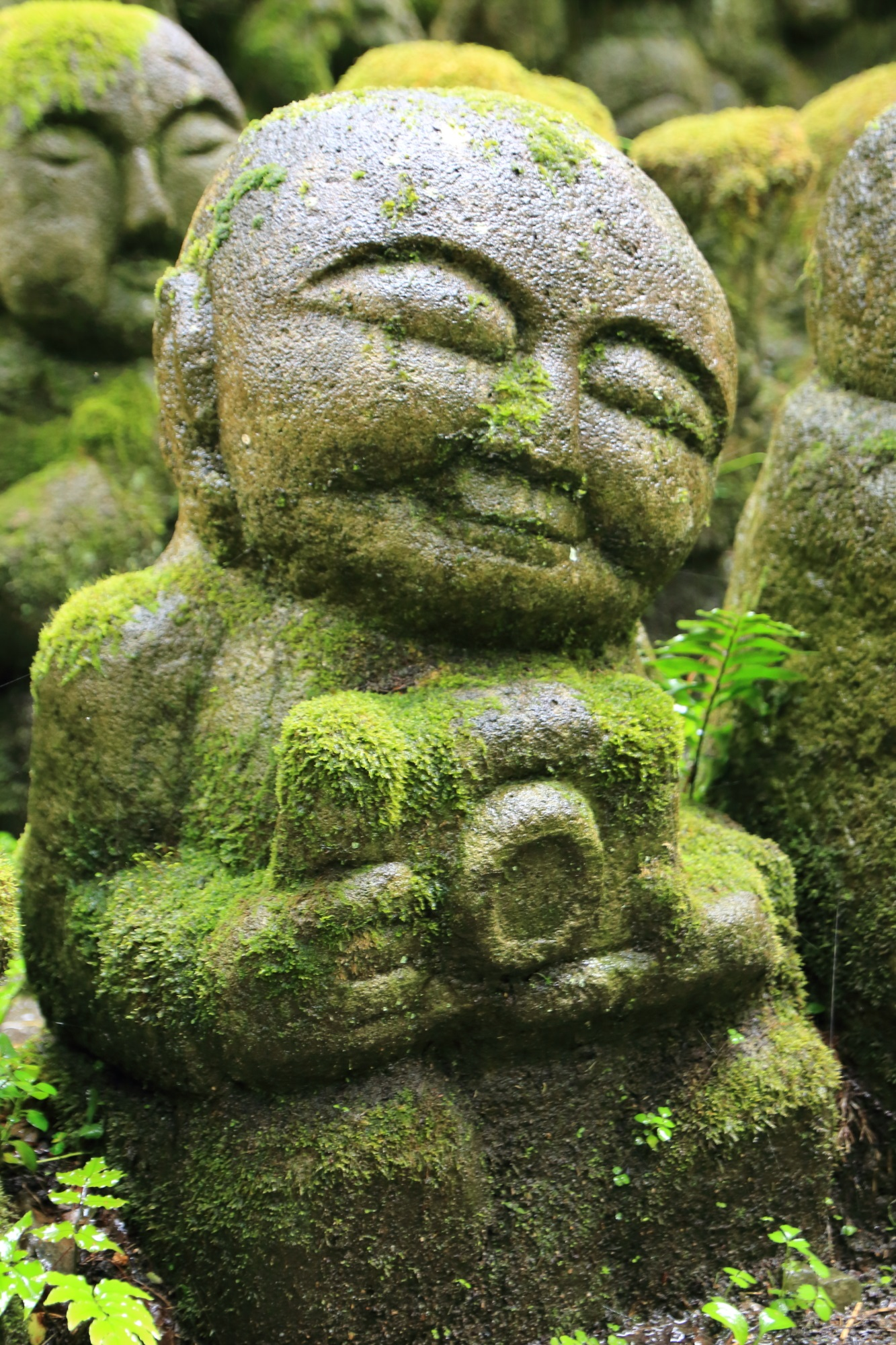 愛宕念仏寺のカメラマンの千二百羅漢