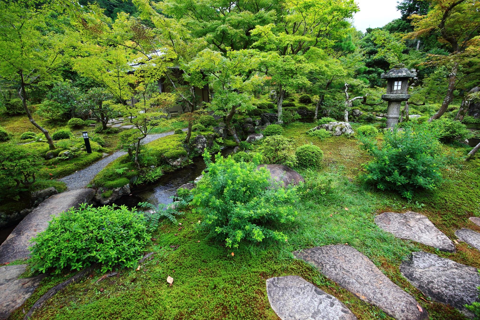 南禅寺だいねいけんの池泉回遊式庭園