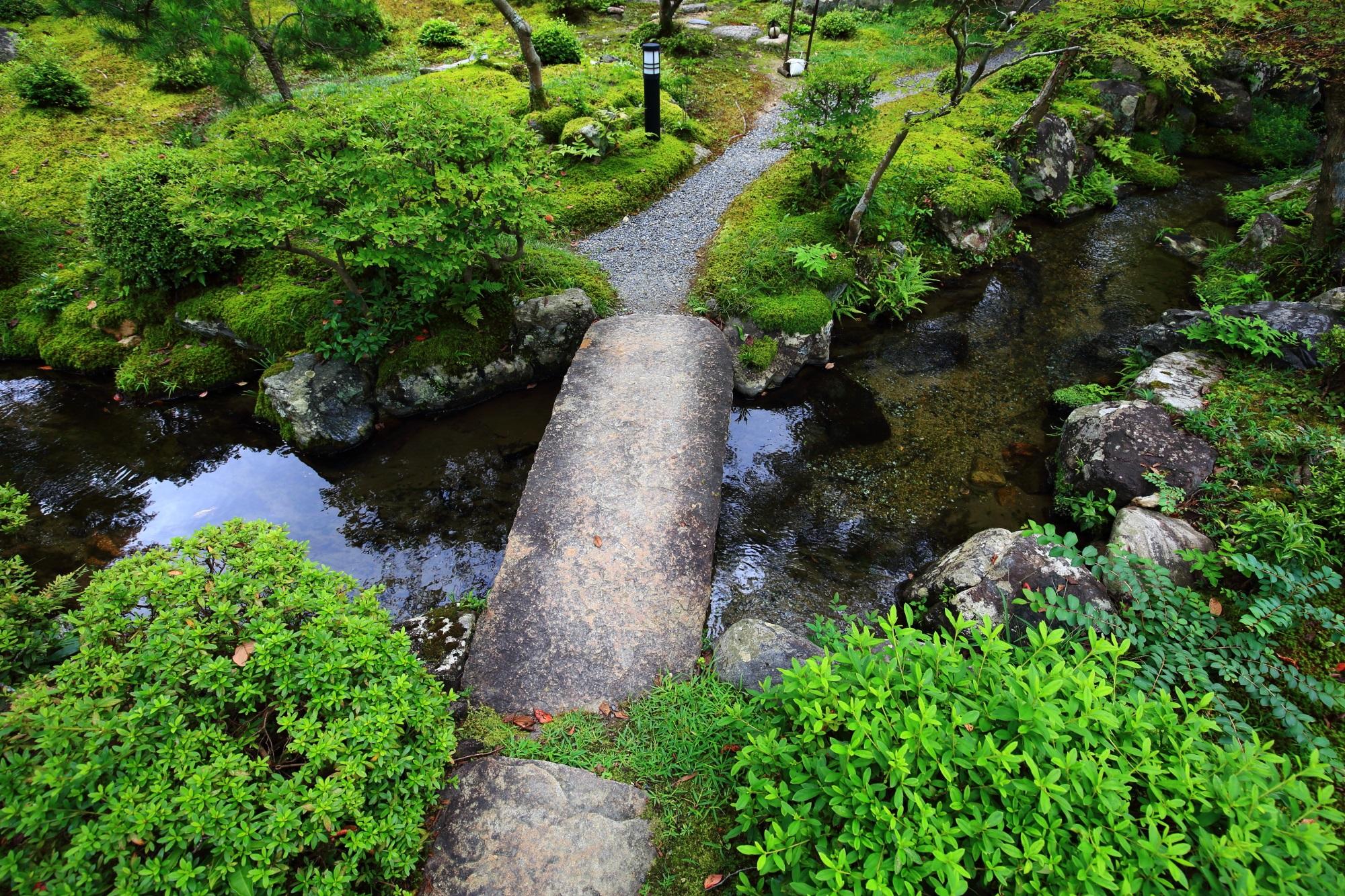 南禅寺大寧軒の池と苔と緑