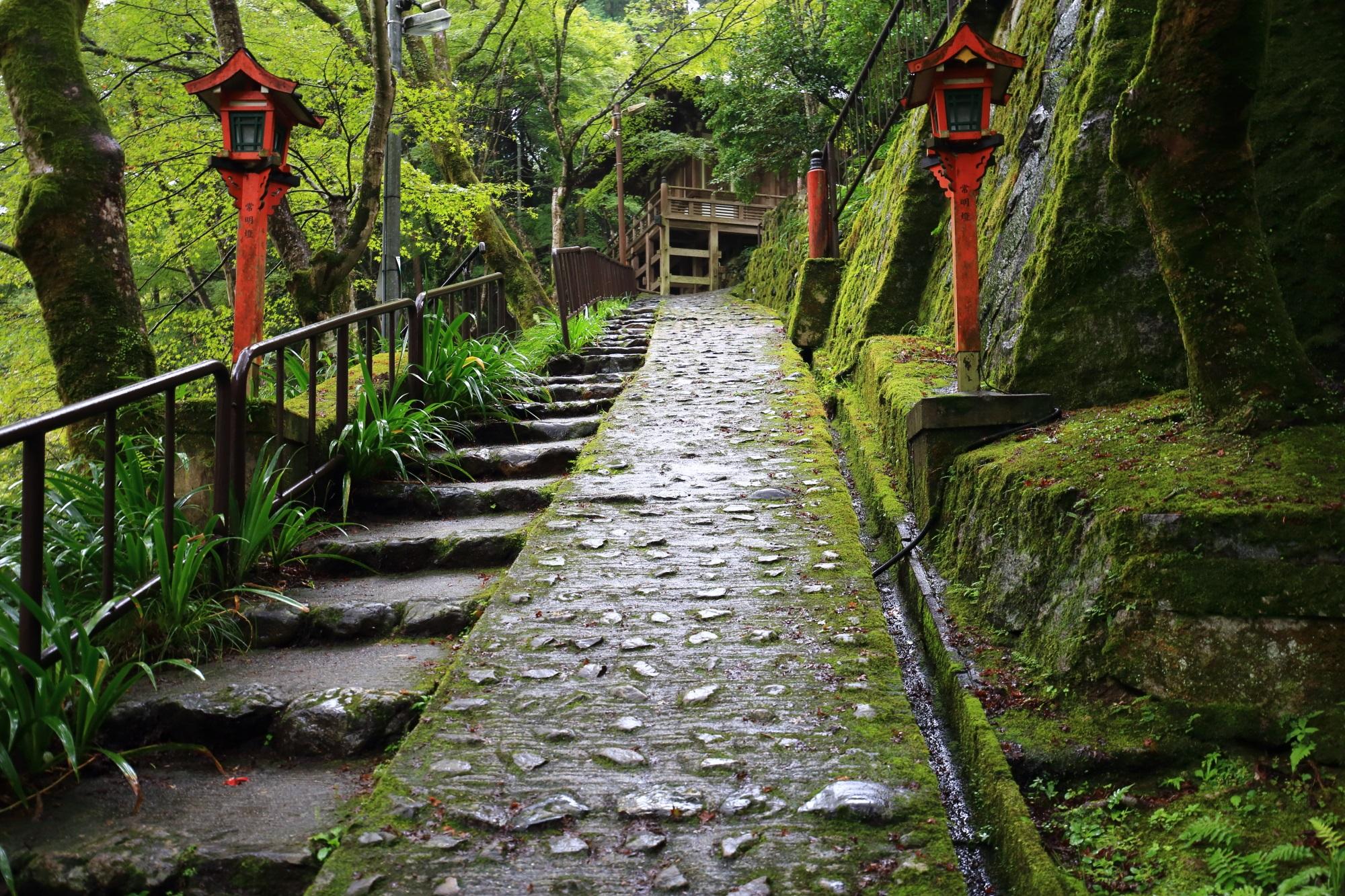 愛宕念仏寺の地蔵堂と参道