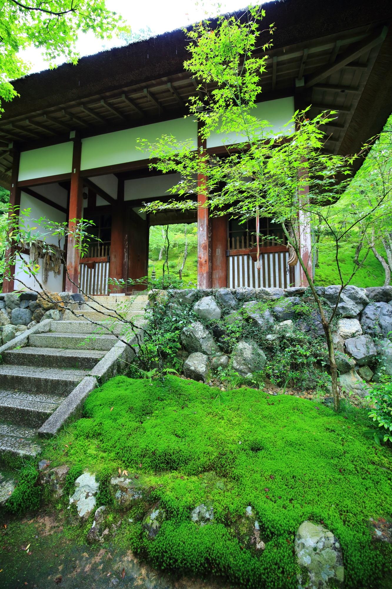 奥嵯峨常寂光寺の仁王門と美しい苔
