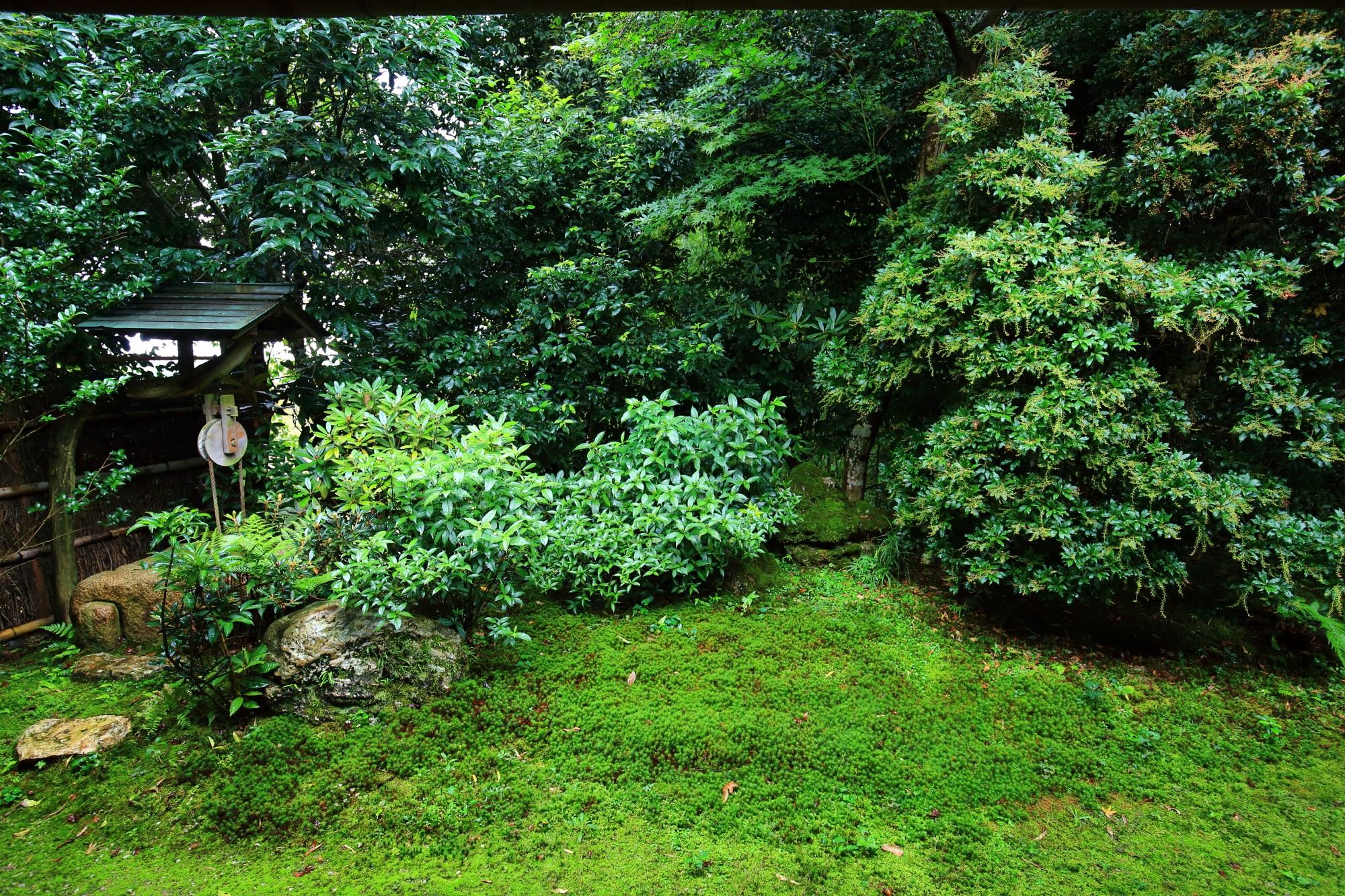 直指庵の本堂中庭