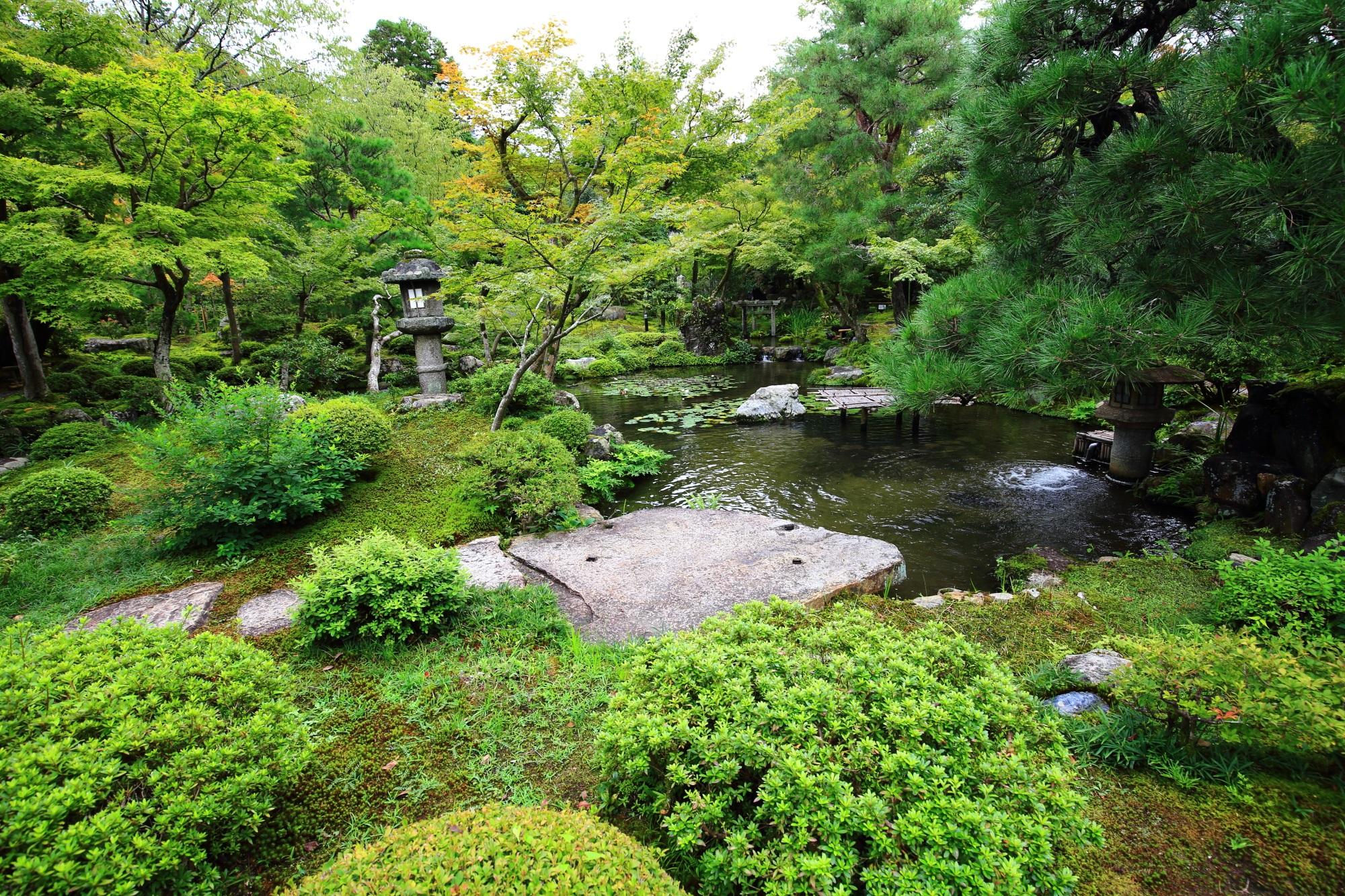 南禅寺大寧軒の池泉回遊式庭園