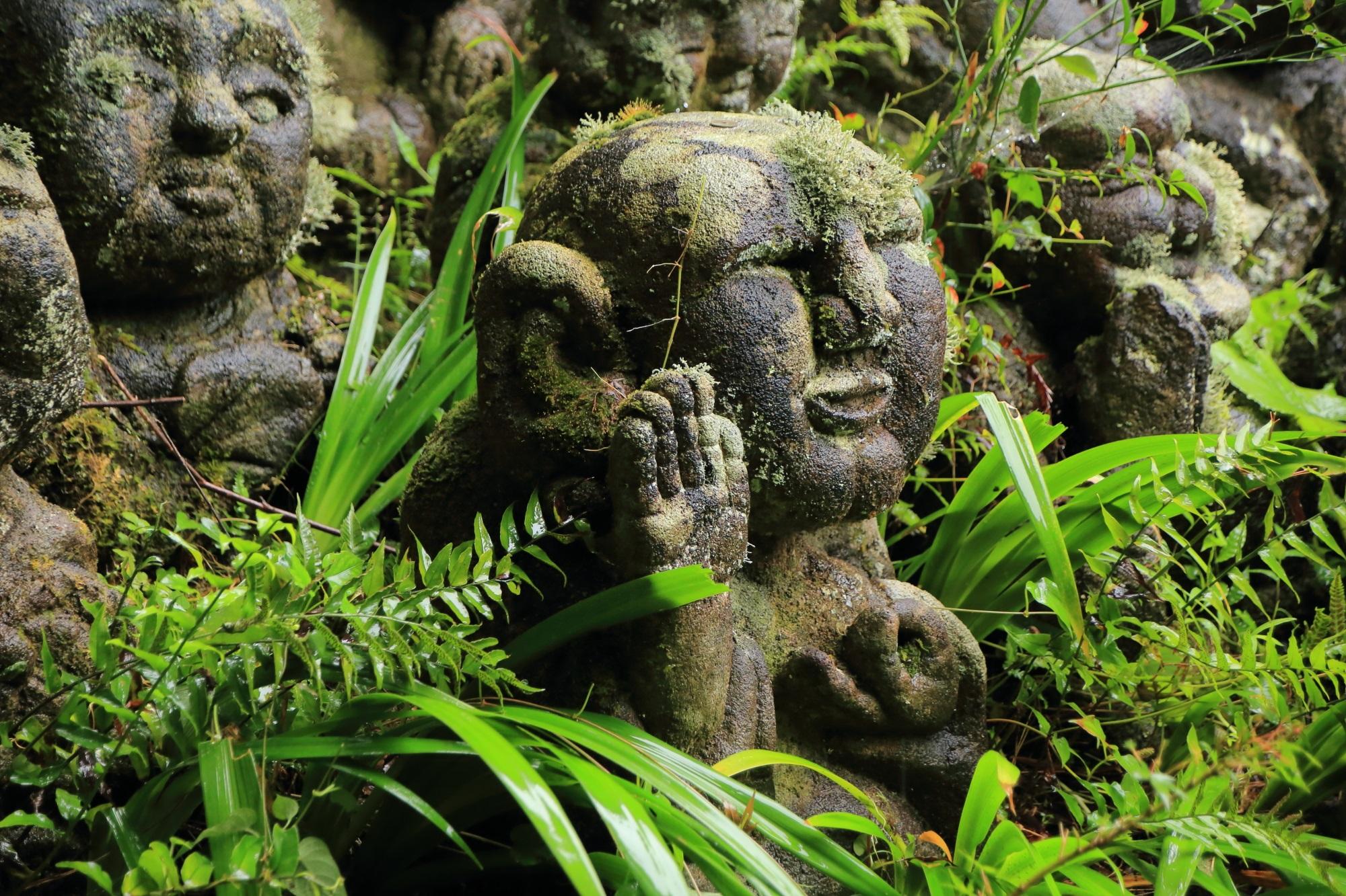 愛宕念仏寺のおいっすの千二百羅漢