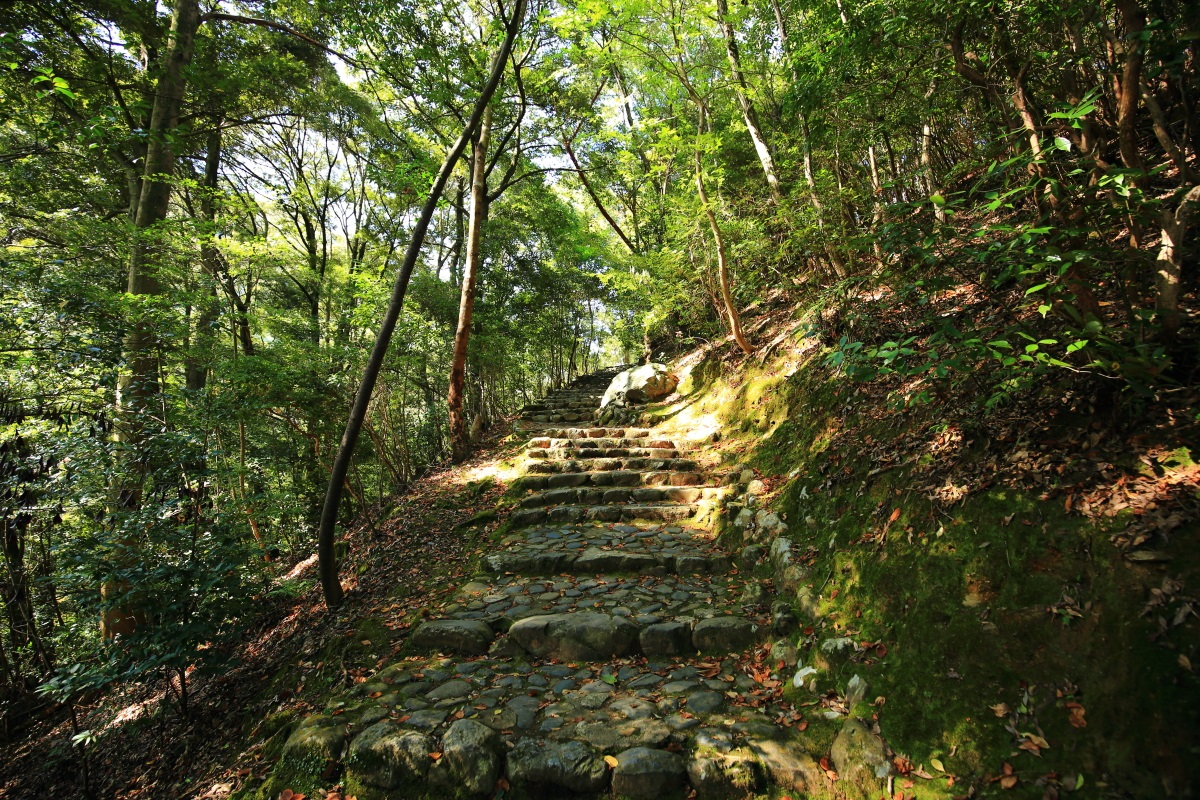 嵐山公園 亀岡地区の上り坂