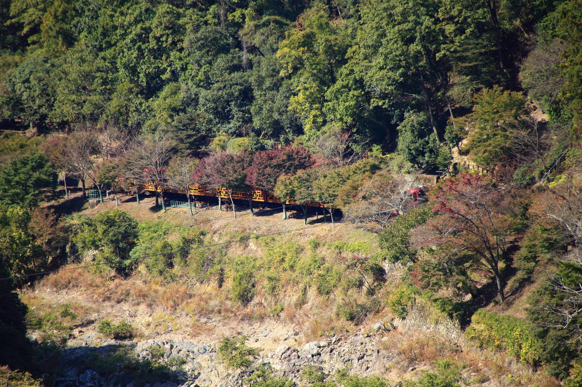 トロッコ列車 保津峡 嵐山公園 亀山地区