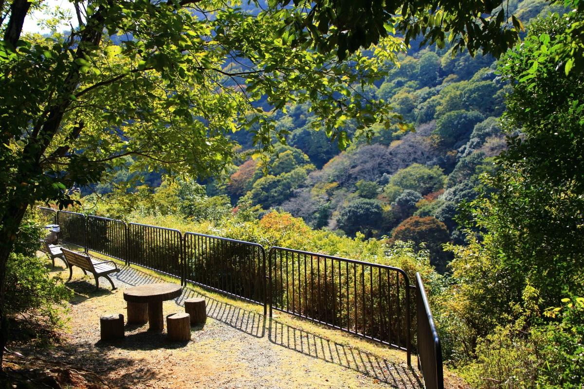 嵐山公園 亀山地区の展望台