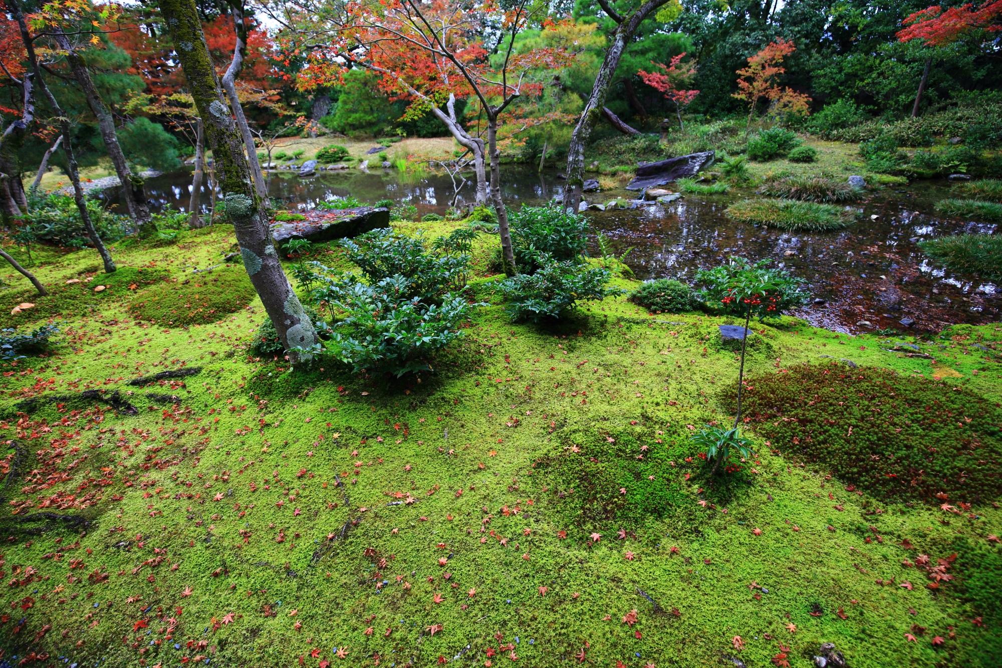 淡い秋色につつまれる水と緑の綺麗な無鄰菴