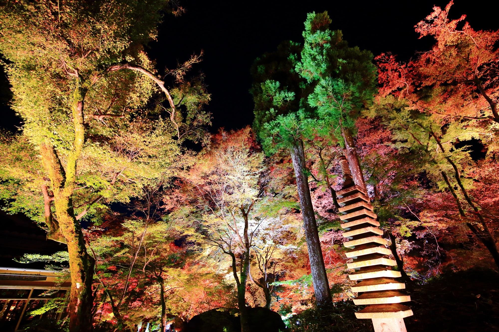天龍寺塔頭の宝厳院の本堂前の美しい紅葉と石塔のライトアップ