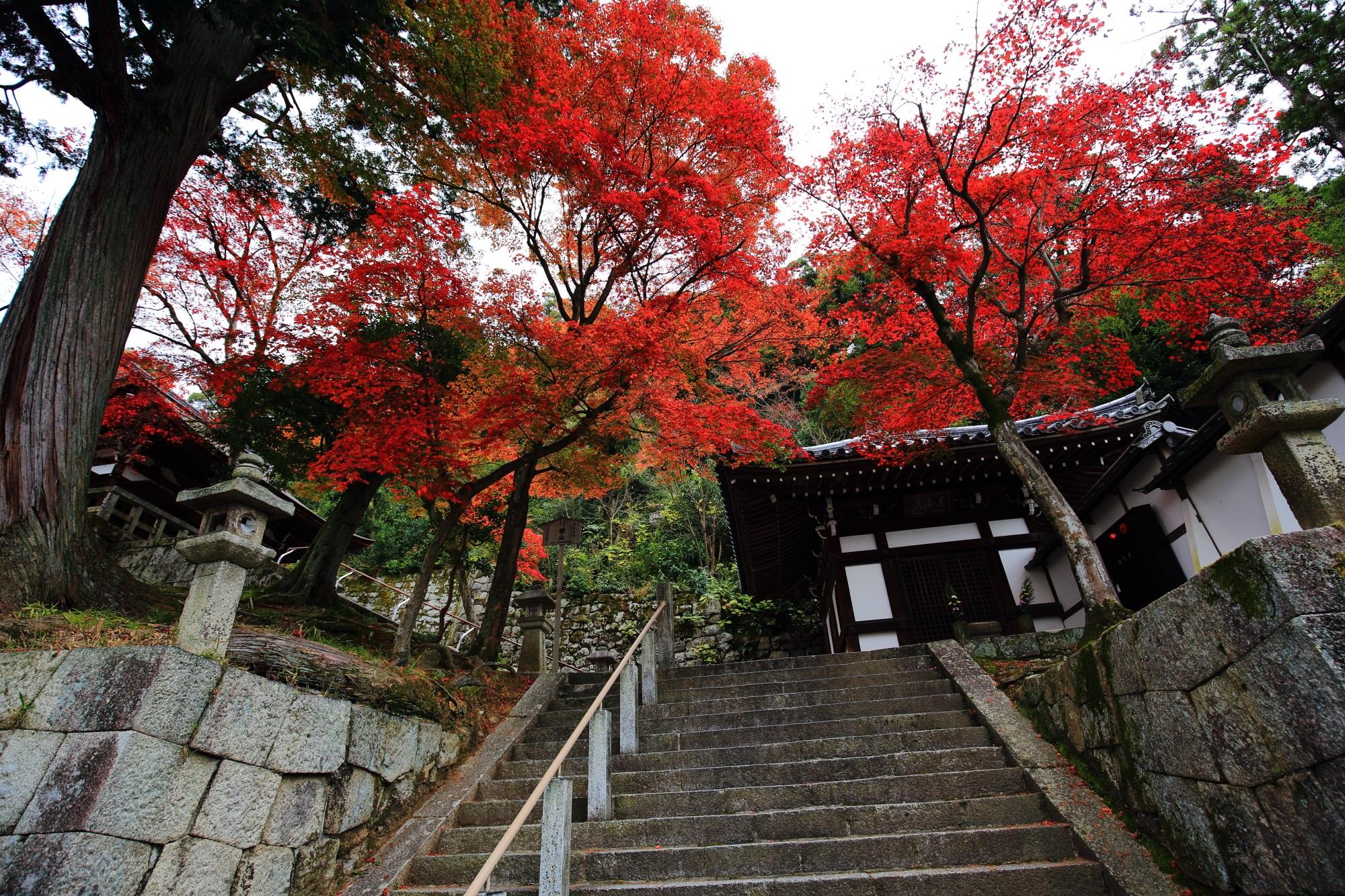 有名な知恩院の中にある隠れた紅葉の名所である御廟