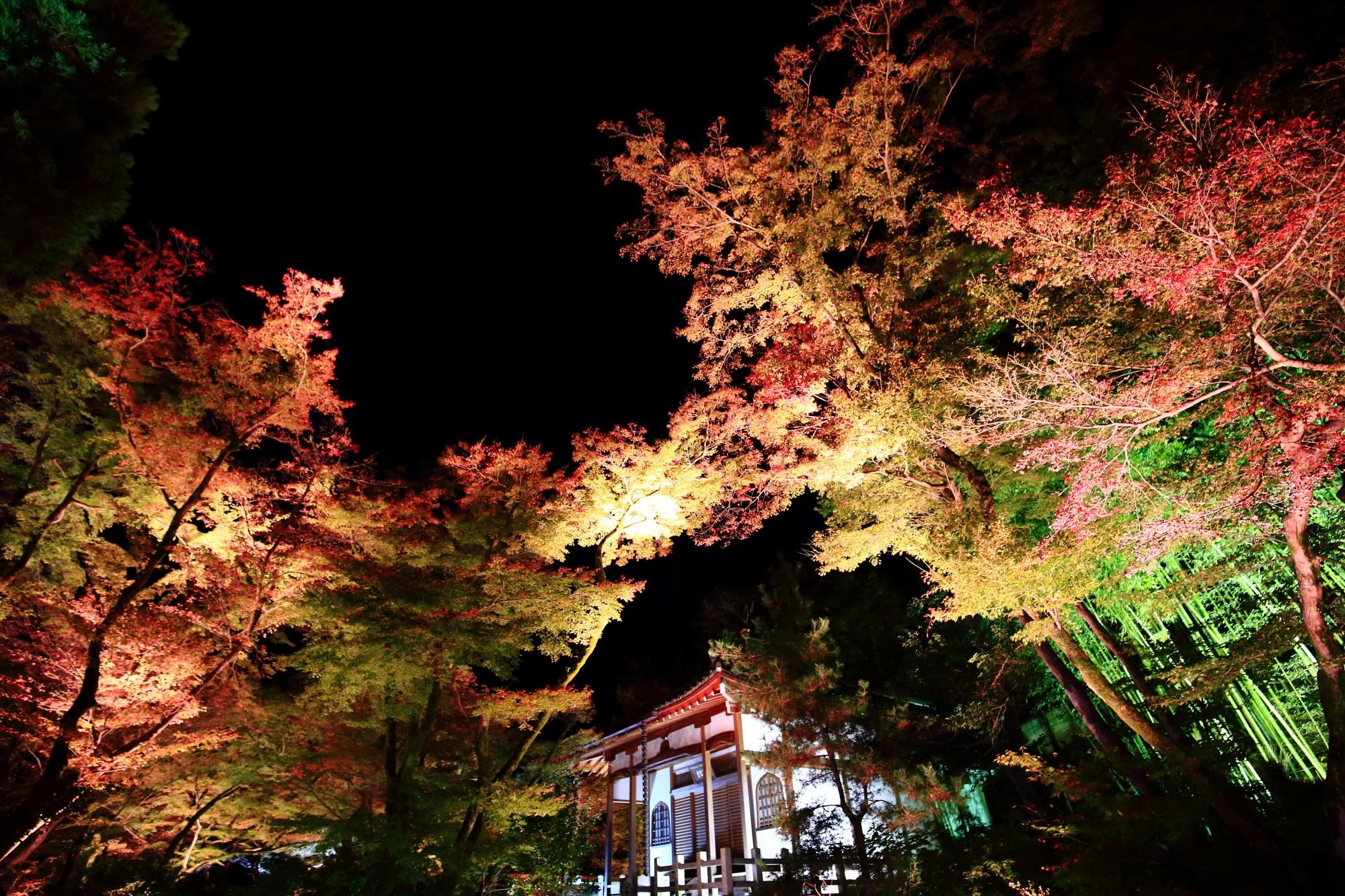 嵐山のもみじの名所の天龍寺宝厳院の獅子吼の庭の無礙光堂(むげこうどう)と紅葉と竹林のライトアップ