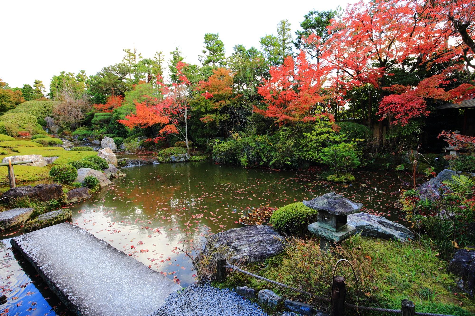 妙心寺退蔵院の余香苑の紅葉や秋の庭園