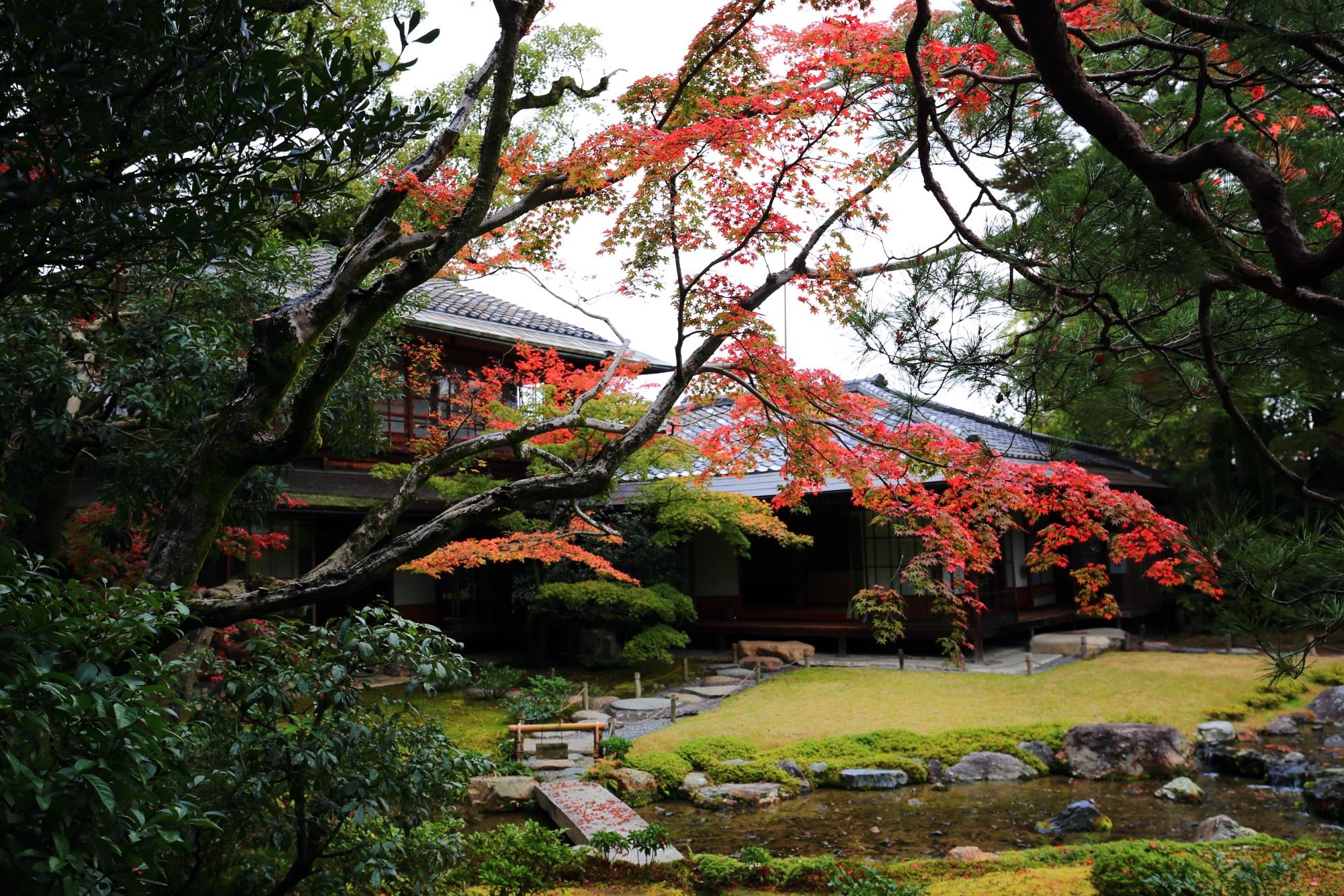 長閑な庭園でゆっくり静かに紅葉狩りが楽しめる無鄰菴
