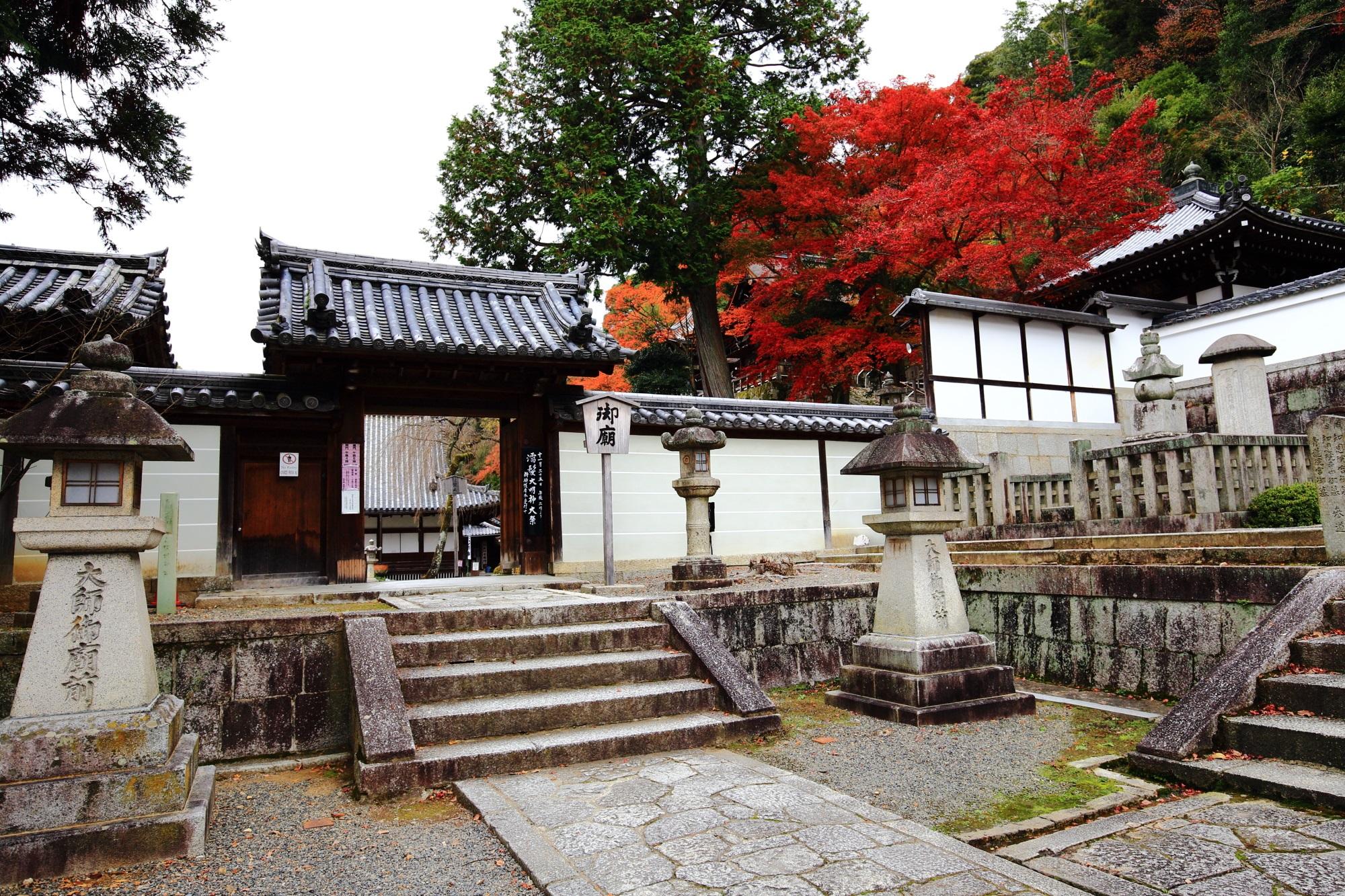 知恩院の法然上人御廟の溢れ出す鮮やかな紅葉