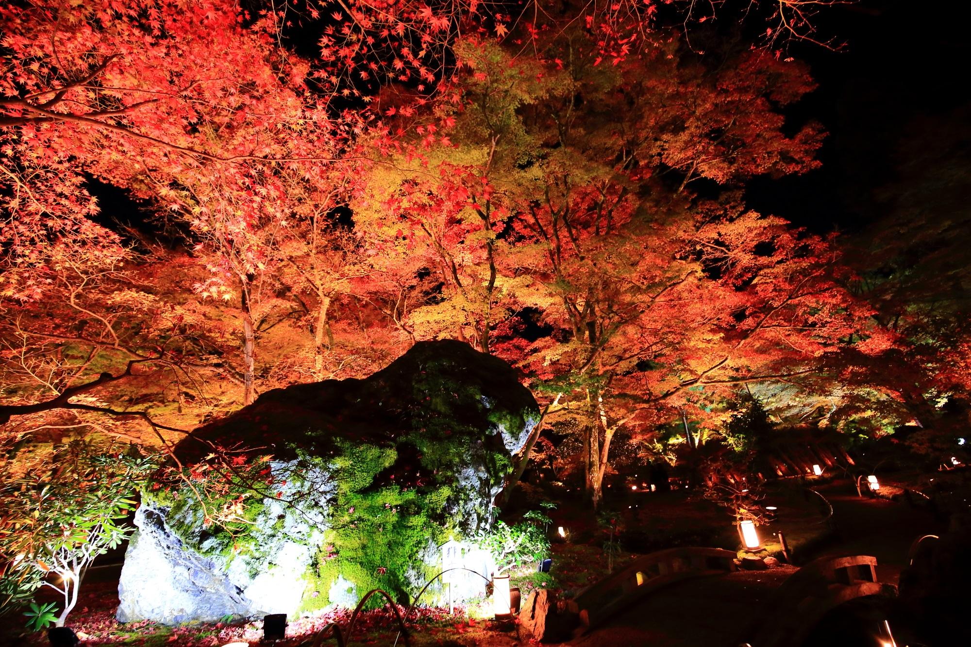紅葉の名所の宝厳院の獅子岩と鮮やかな紅葉ライトアップ