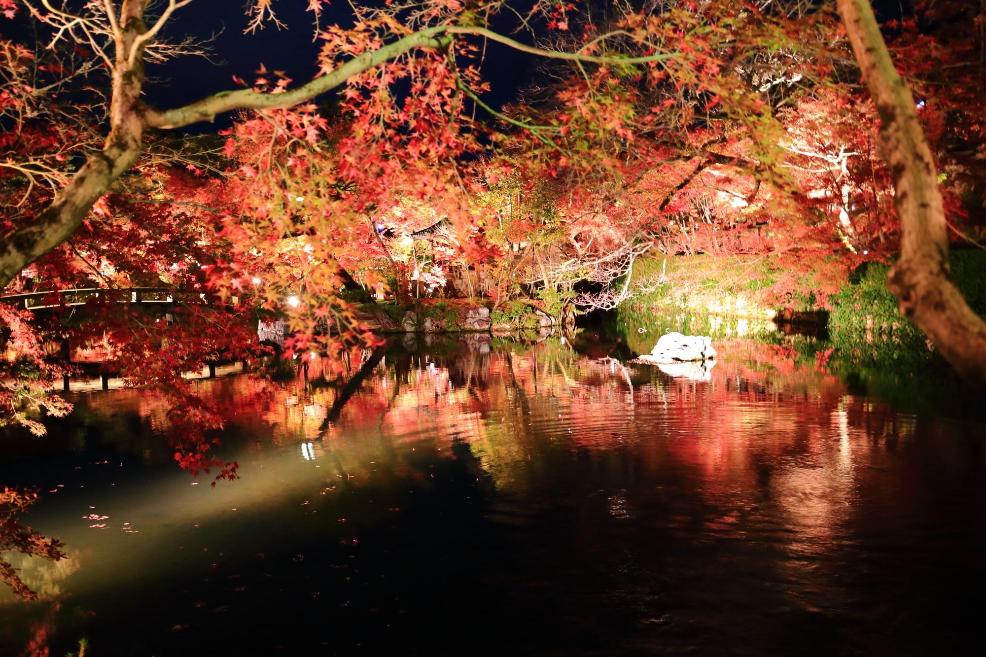 もみじの名所の永観堂の放生池の紅葉と水鏡