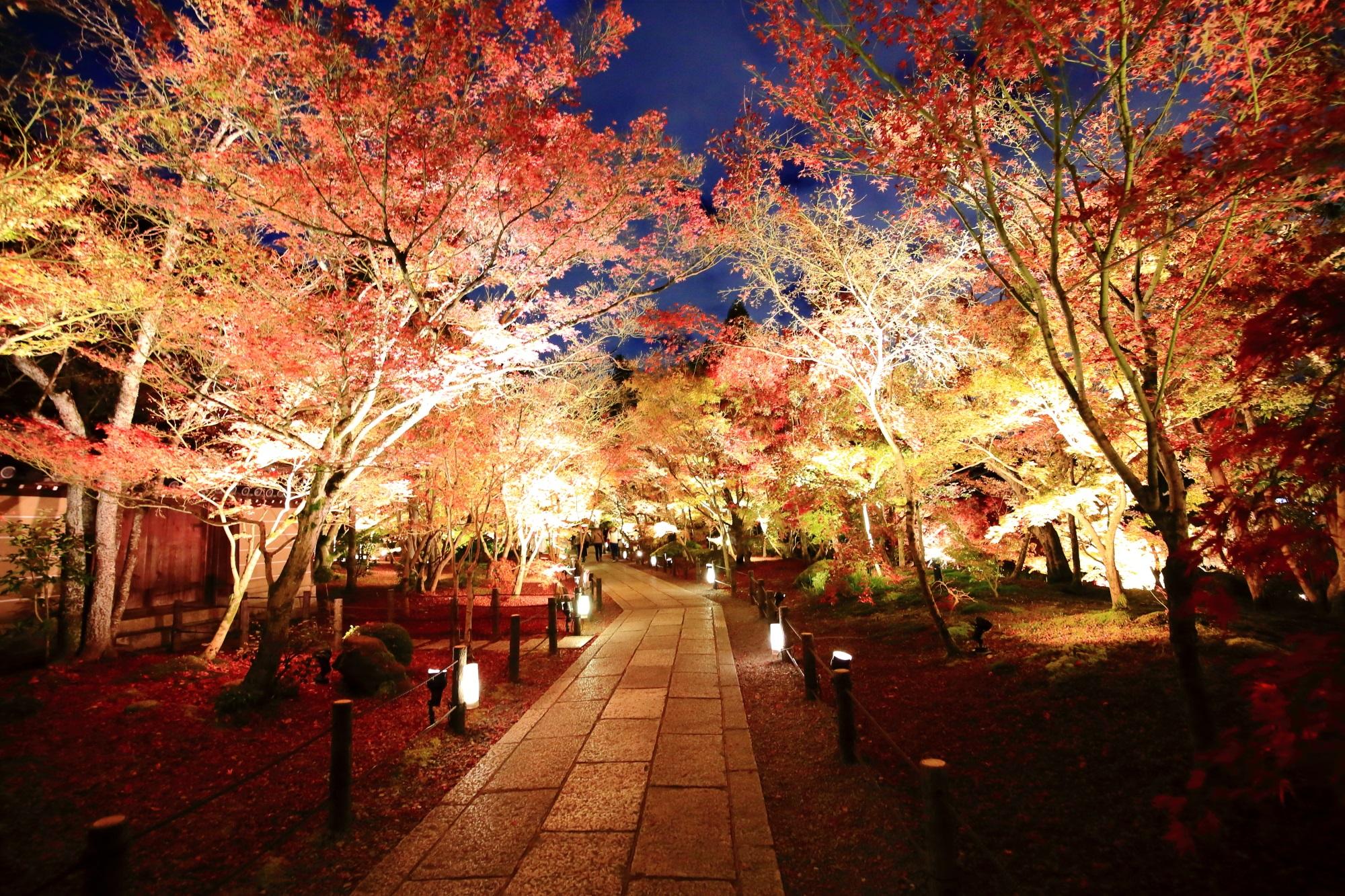 永観堂の参道の見ごろの紅葉ライトアップ