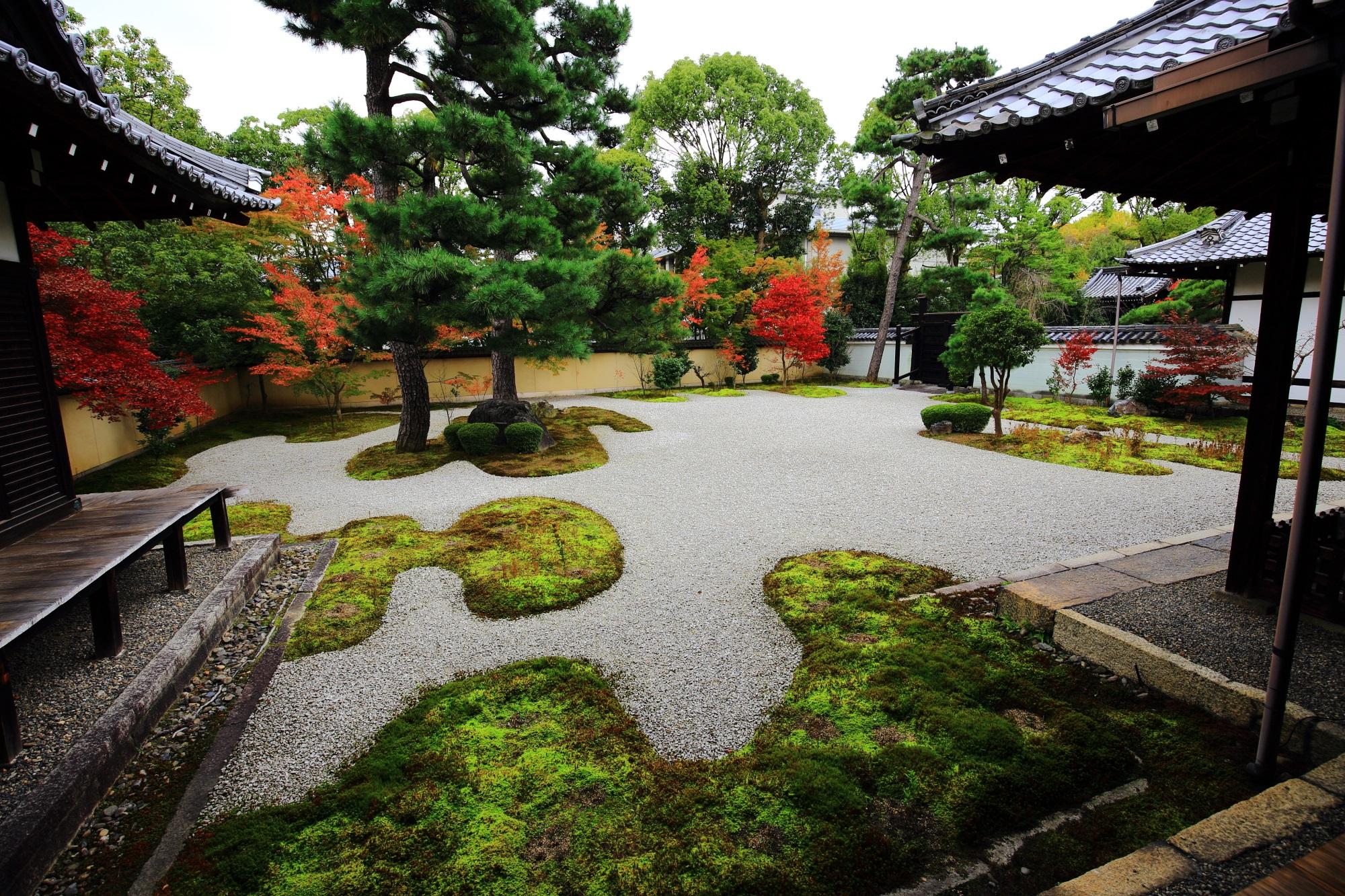 廬山寺の背景を彩る紅葉