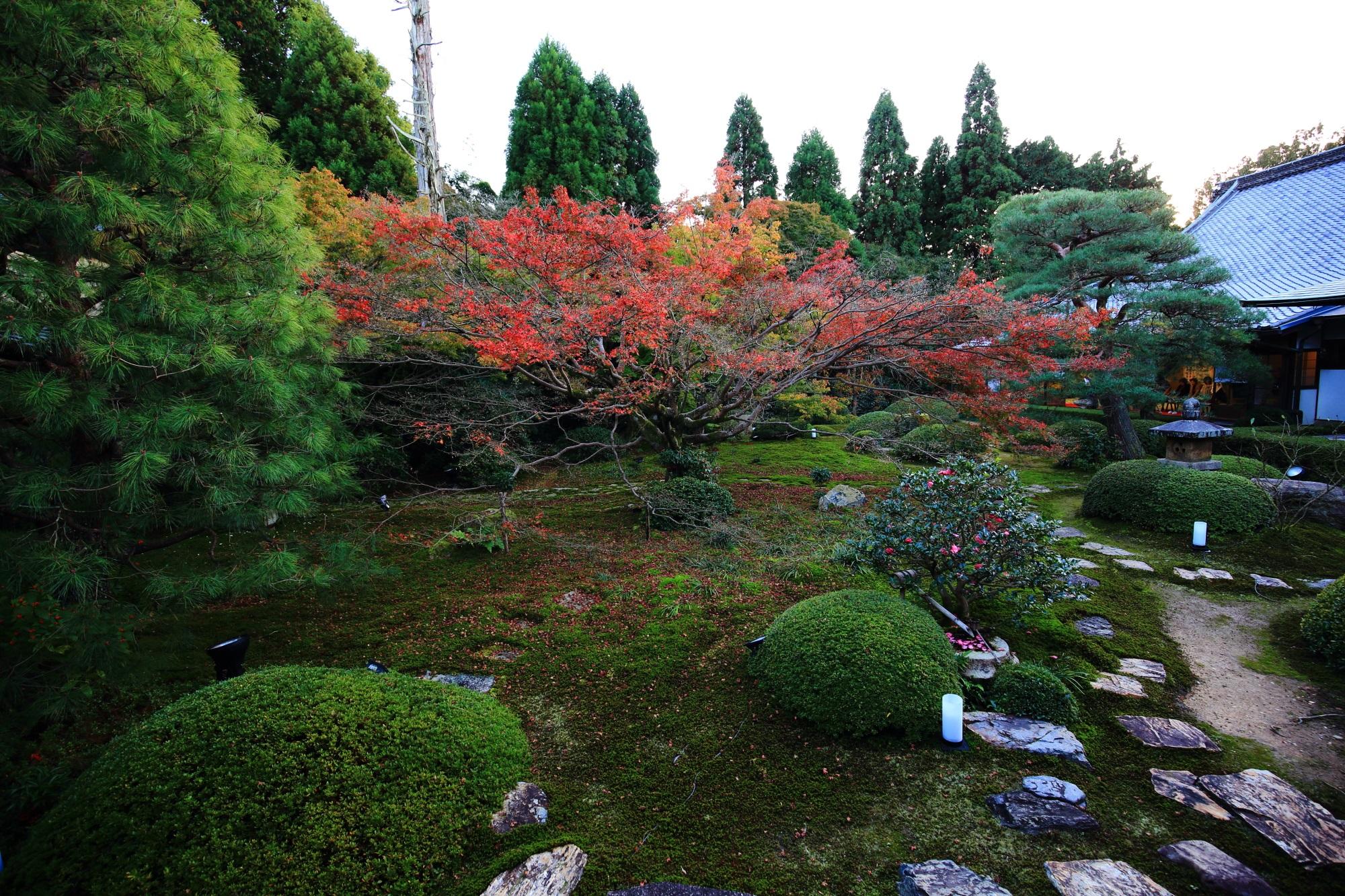 泉涌寺別院の雲龍院の中庭の紅葉